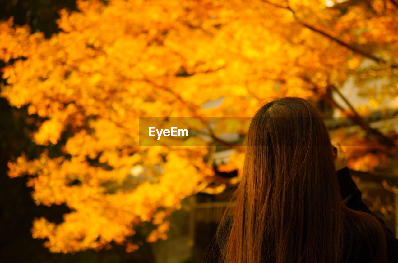 Rear View Of Woman Standing In Front Of Autumn Tree