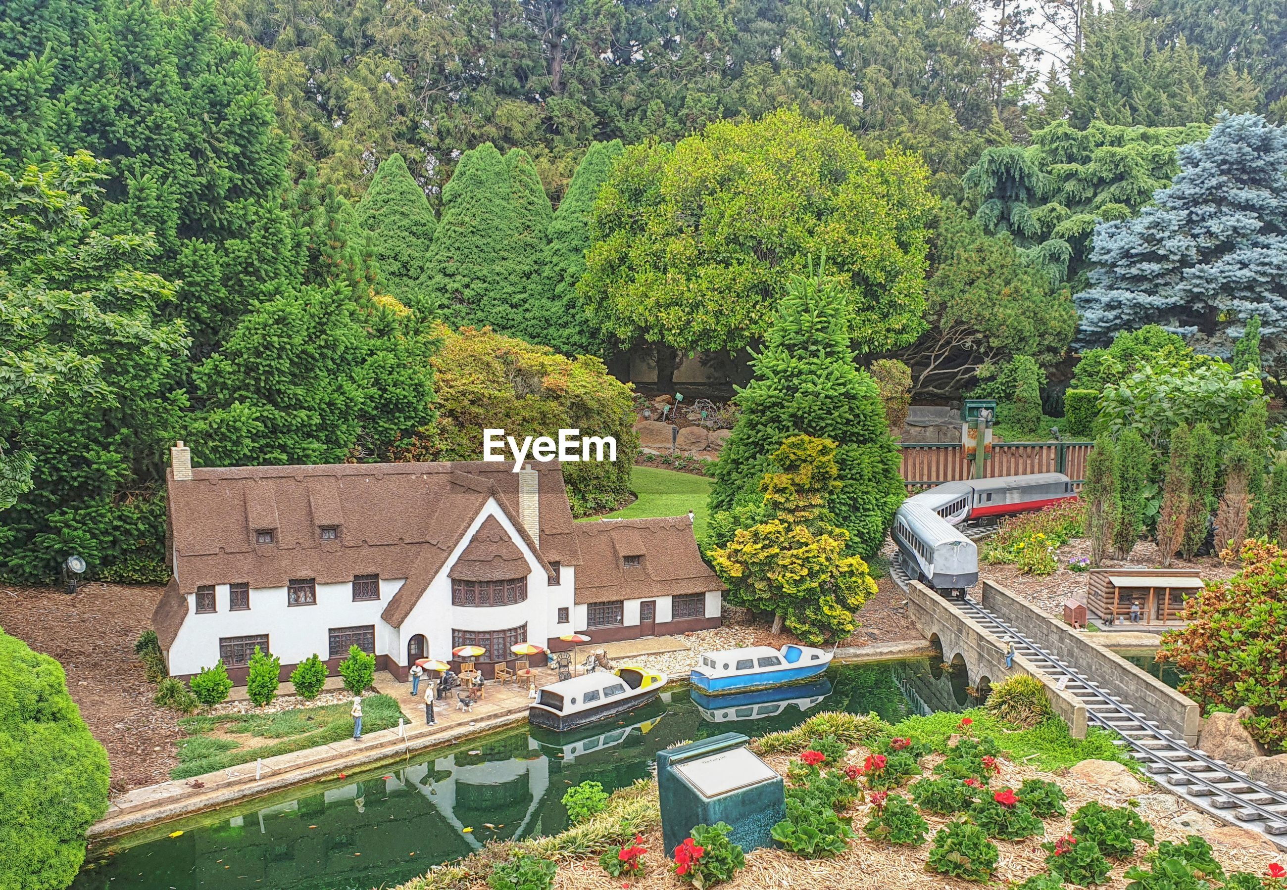 HIGH ANGLE VIEW OF TREES AND PLANTS GROWING OUTSIDE HOUSE