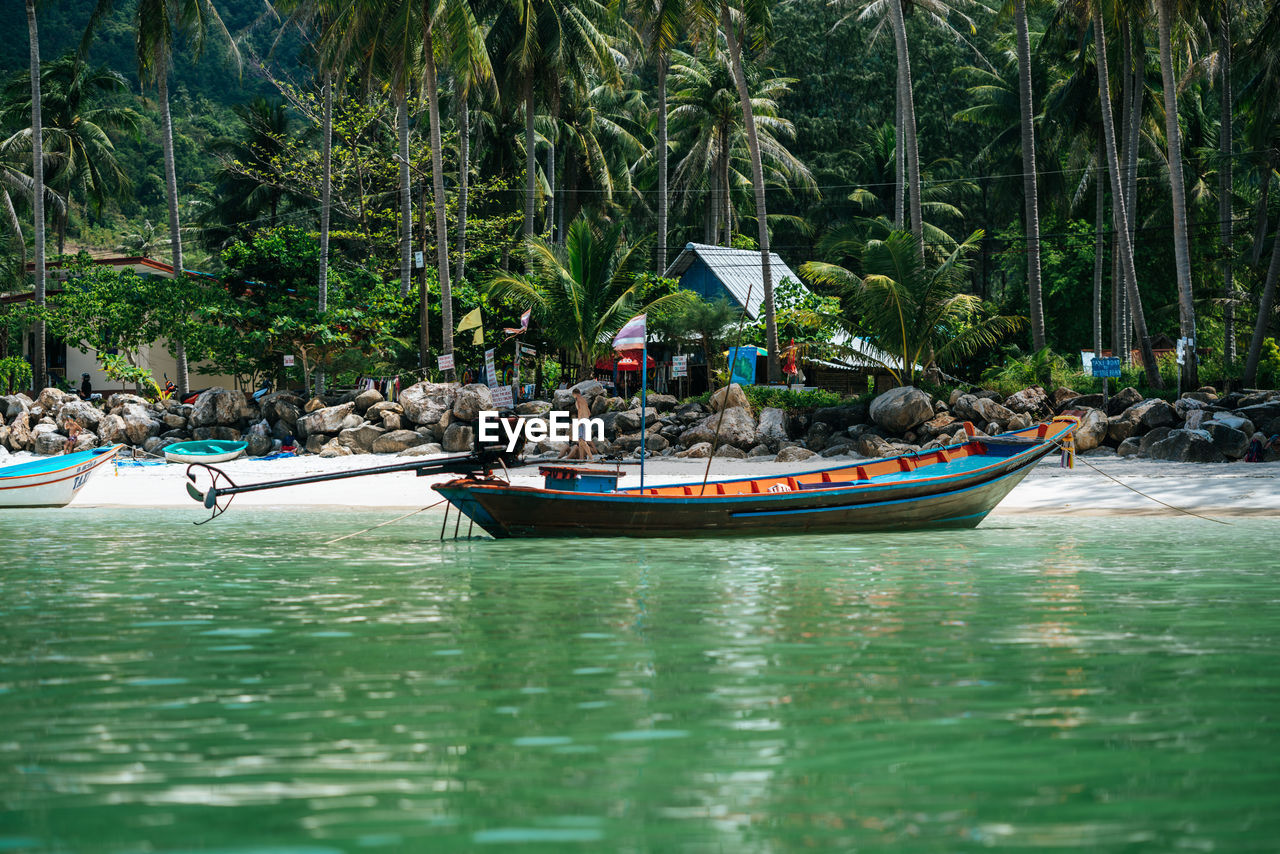 water, nautical vessel, tree, transportation, mode of transportation, plant, waterfront, nature, day, incidental people, travel, sea, group of people, outdoors, palm tree, tropical climate, men, real people, travel destinations