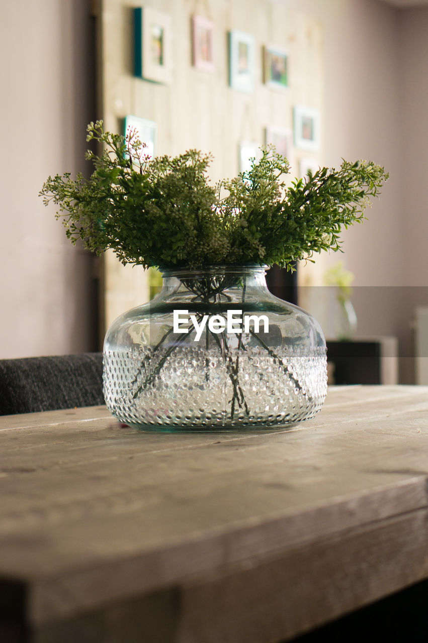 Plant In Vase On Wooden Table At Home