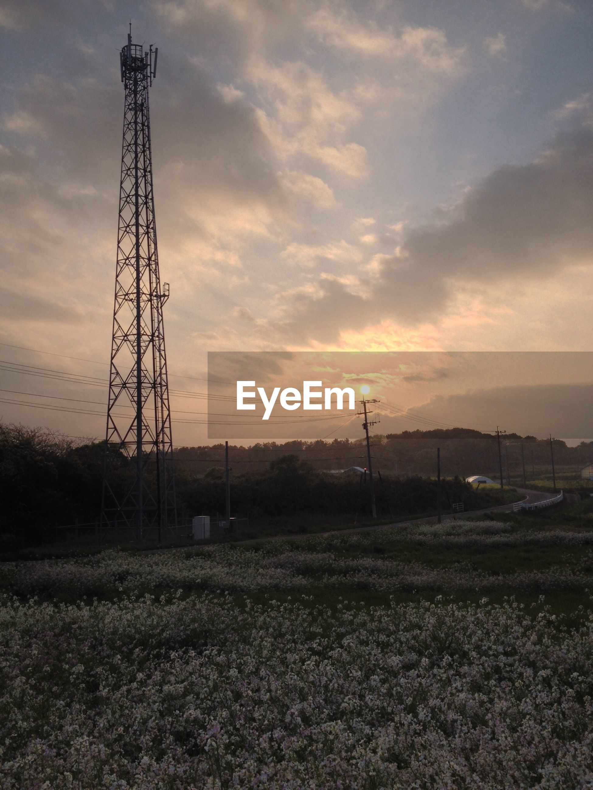 sunset, sky, landscape, field, fuel and power generation, electricity pylon, cloud - sky, orange color, rural scene, electricity, tranquility, technology, nature, tranquil scene, silhouette, scenics, cloud, outdoors, power supply, power line