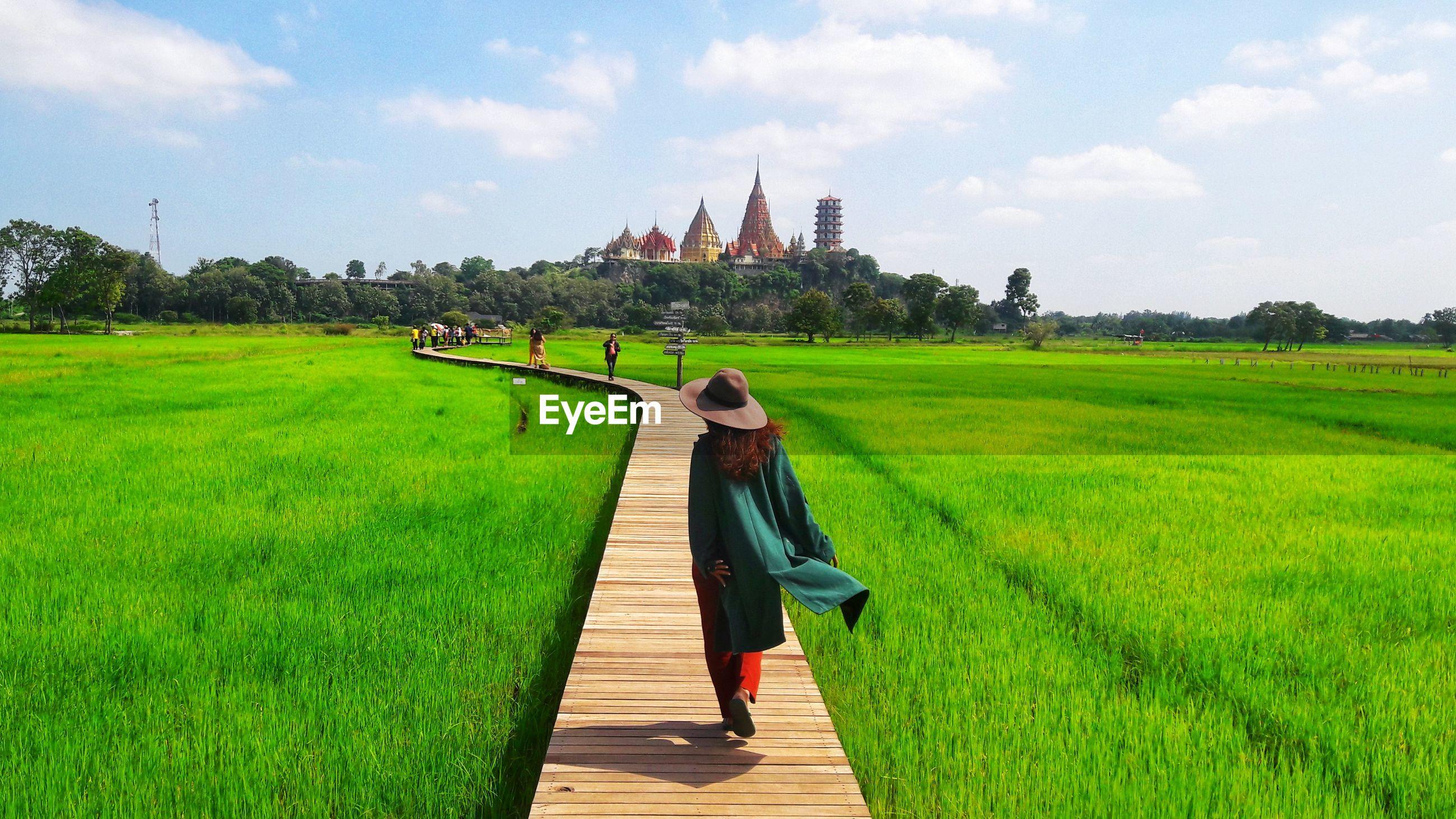 Rear view of woman walking on boardwalk amidst green farm against sky