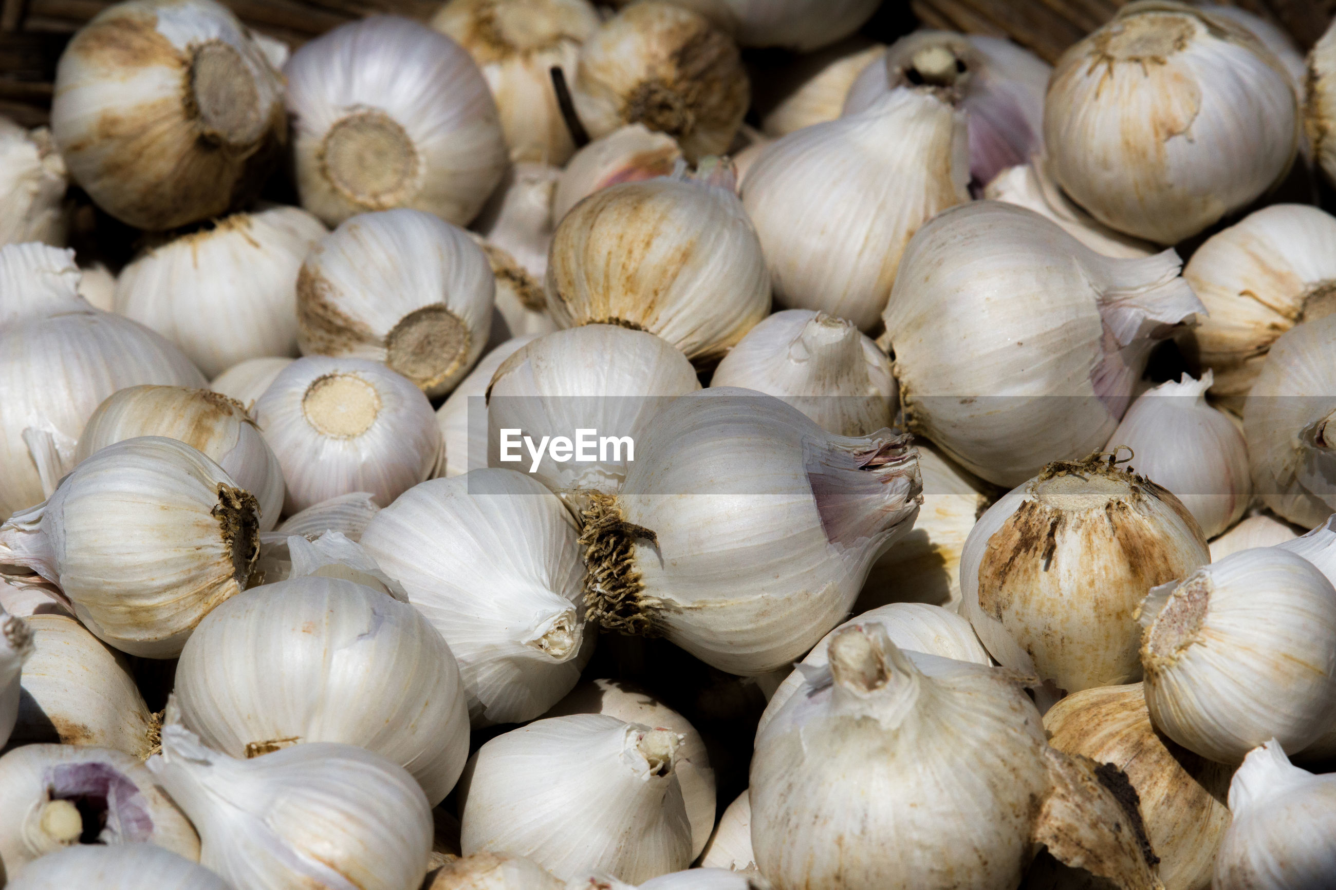 Close-up of onions for sale at market stall