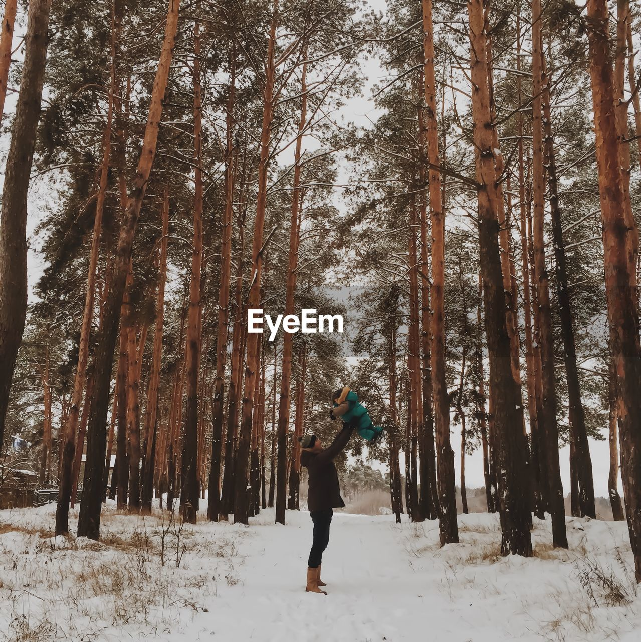 snow, tree, winter, cold temperature, land, forest, plant, tree trunk, trunk, one person, nature, beauty in nature, full length, leisure activity, real people, covering, lifestyles, field, day, warm clothing, woodland, outdoors