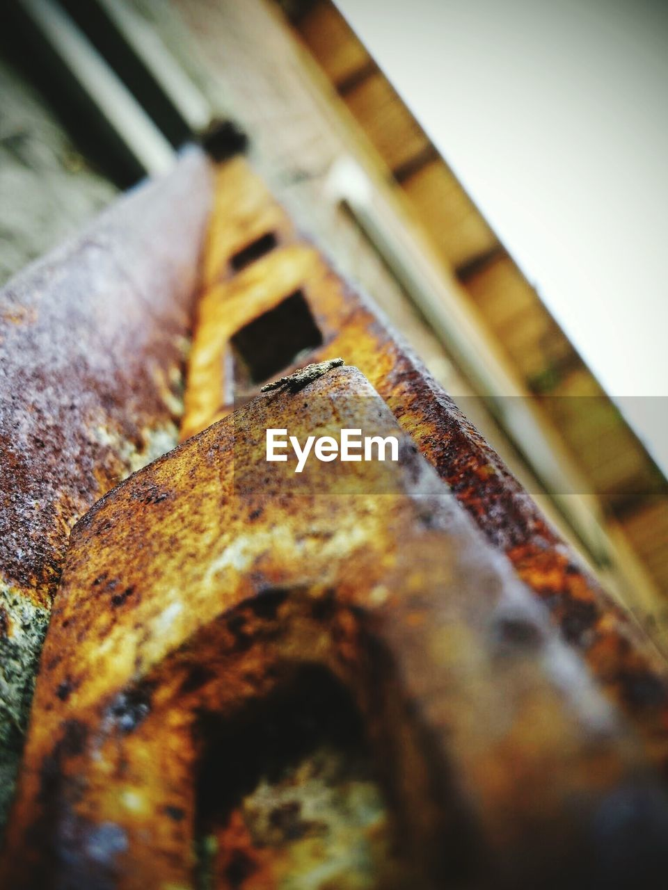 rusty, selective focus, no people, close-up, outdoors, day
