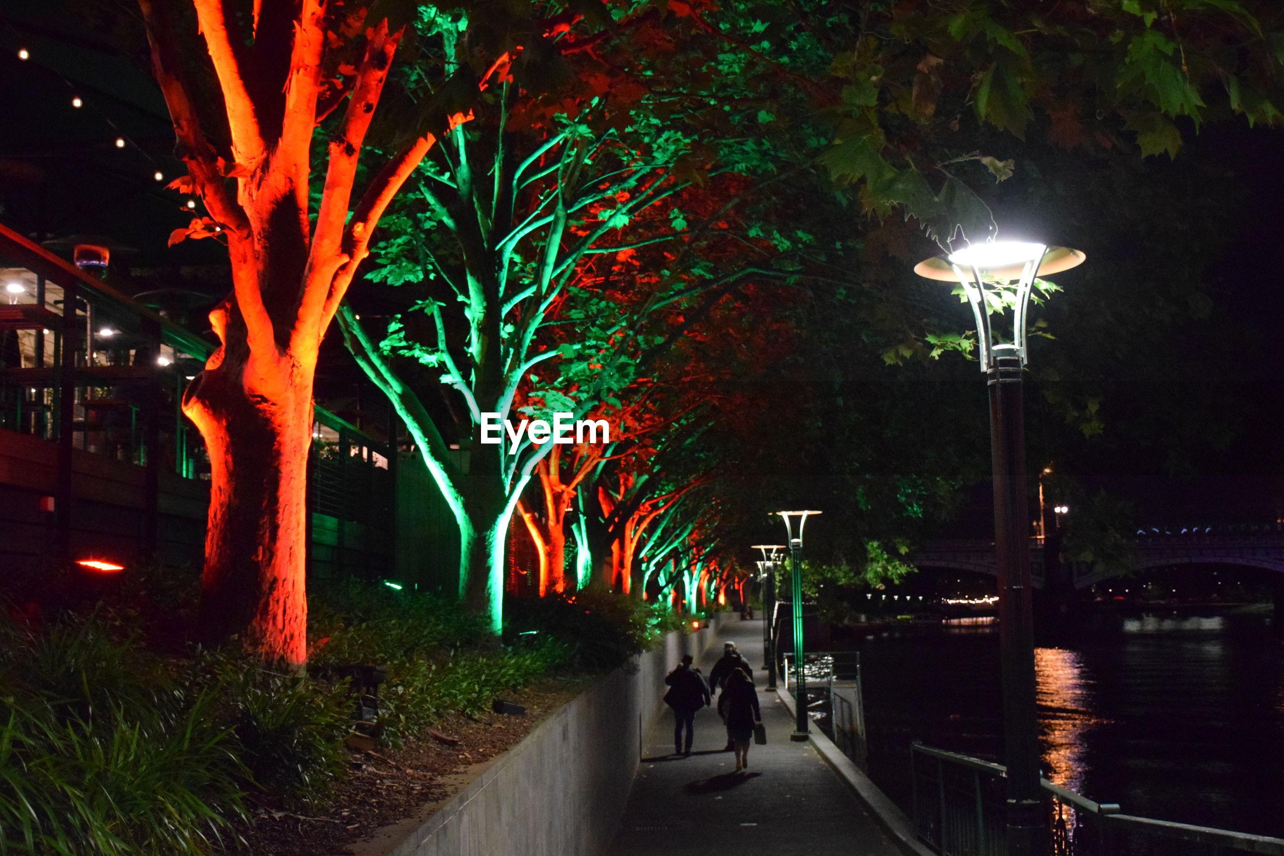 ILLUMINATED STREET LIGHT BY TREES IN CITY AT NIGHT