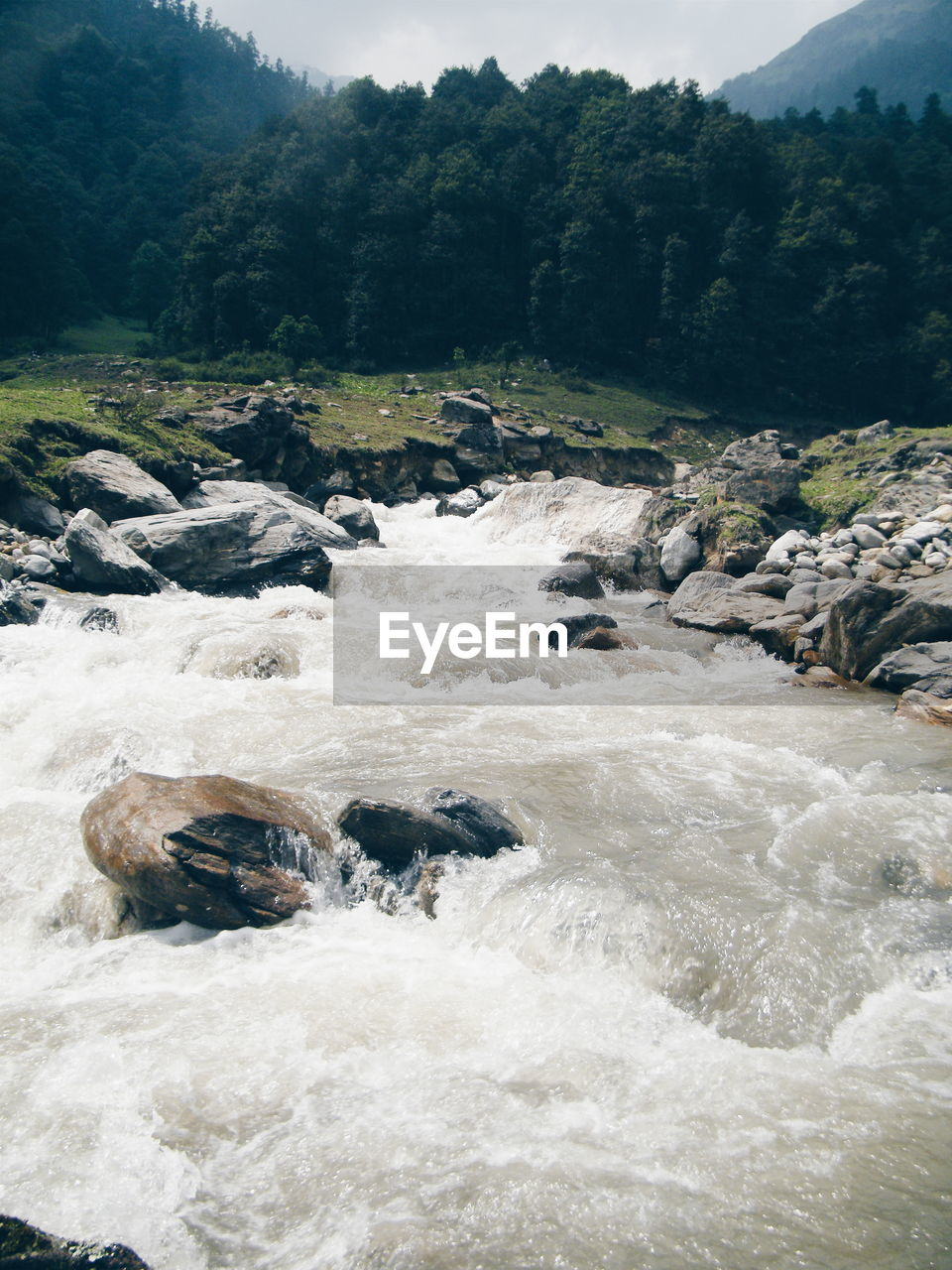 river, flowing water, nature, water, motion, outdoors, day, no people, tree, beauty in nature, scenics, waterfall, forest, long exposure, tranquility, mountain, sky