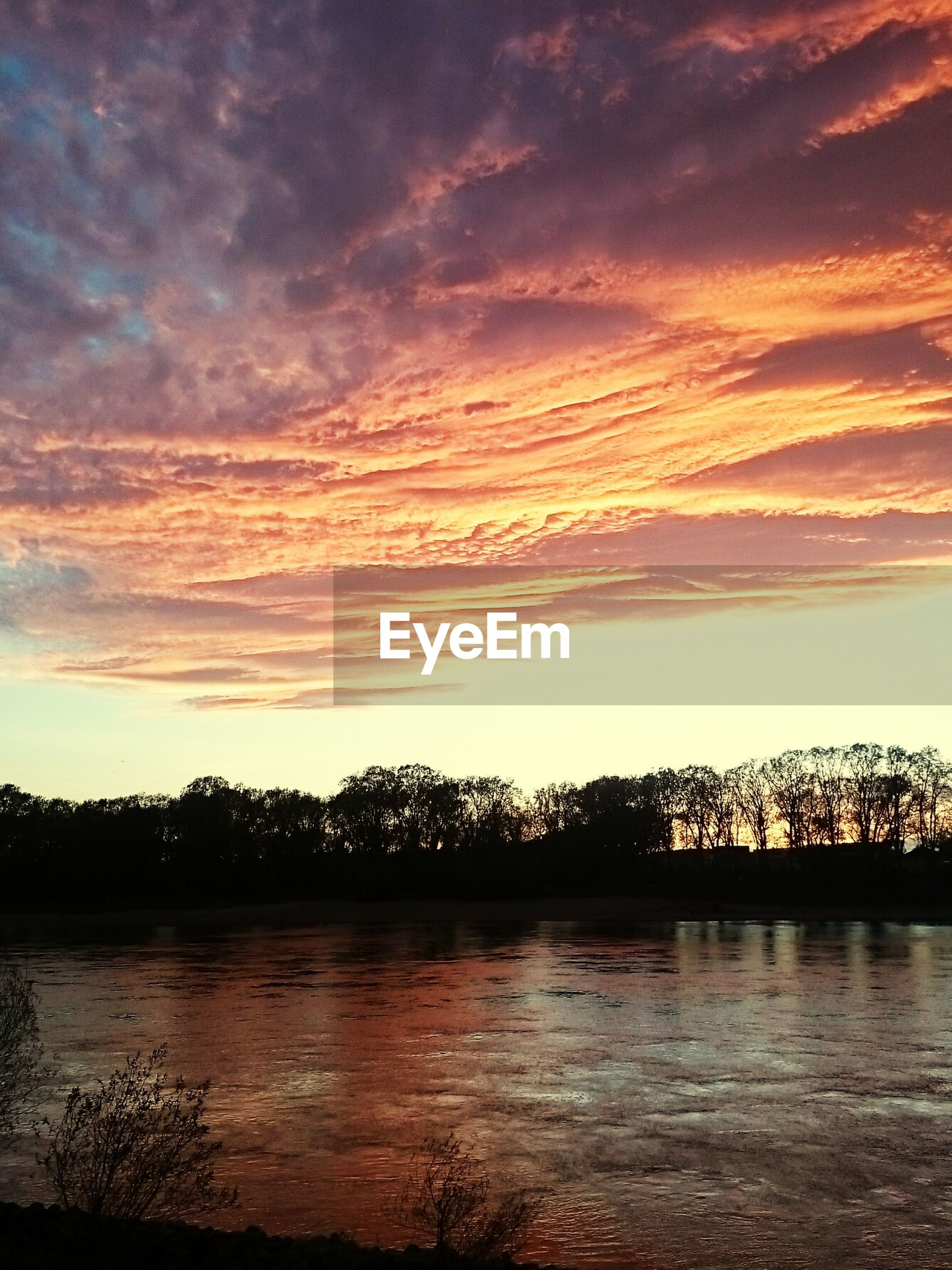 Idyllic shot of silhouette trees by river against cloudy sunset sky