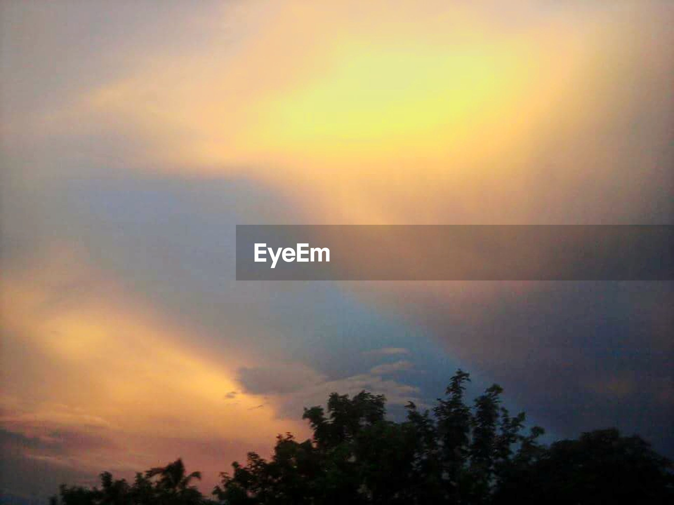 sunset, sky, tree, beauty in nature, tranquility, silhouette, scenics, low angle view, tranquil scene, cloud - sky, nature, orange color, idyllic, cloudy, growth, cloud, dramatic sky, outdoors, no people, weather