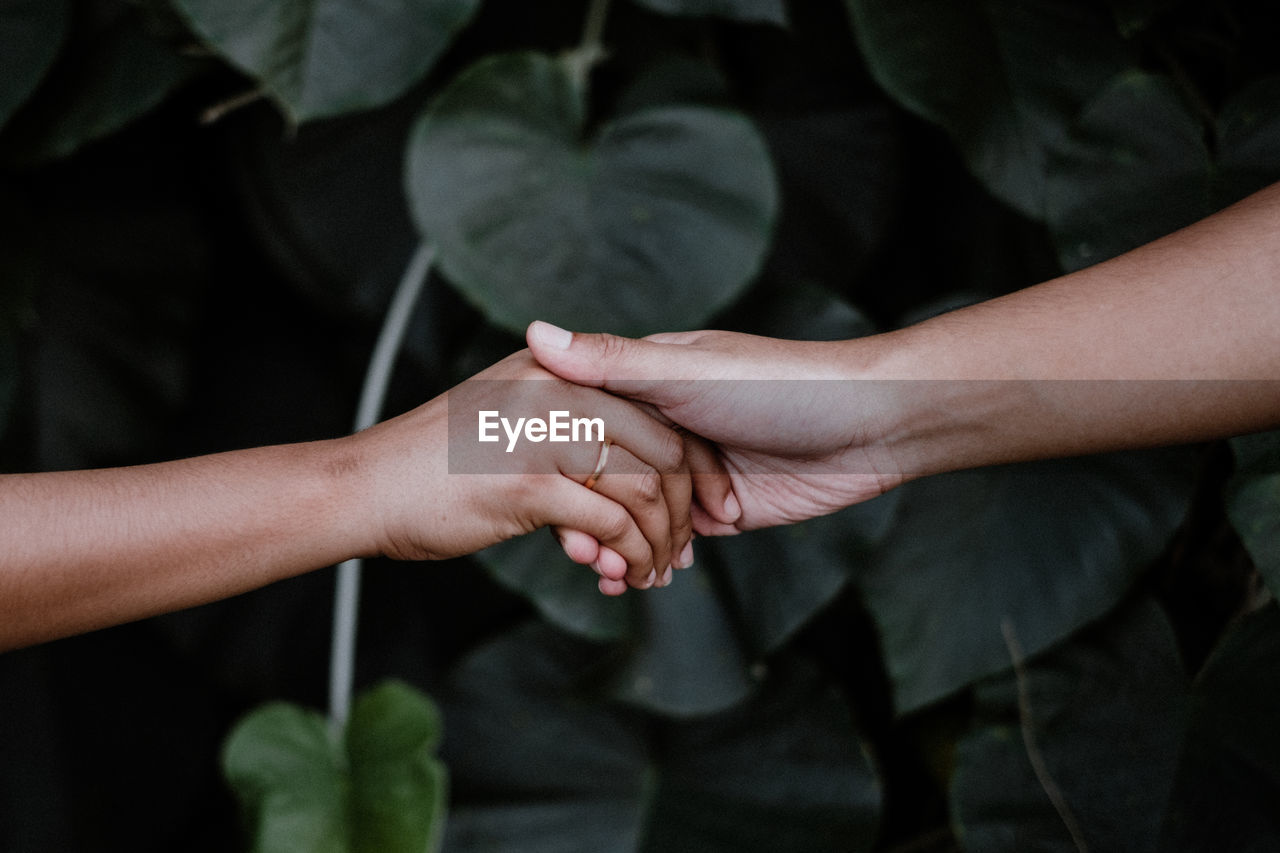 Cropped image of couple holding hands against plants
