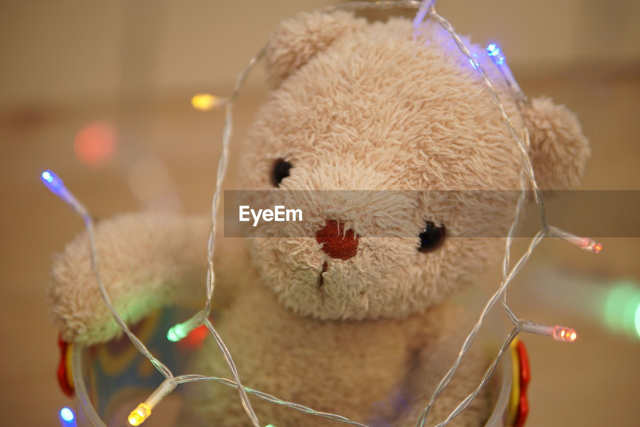 Close-up of teddy bear with illuminated lighting equipment