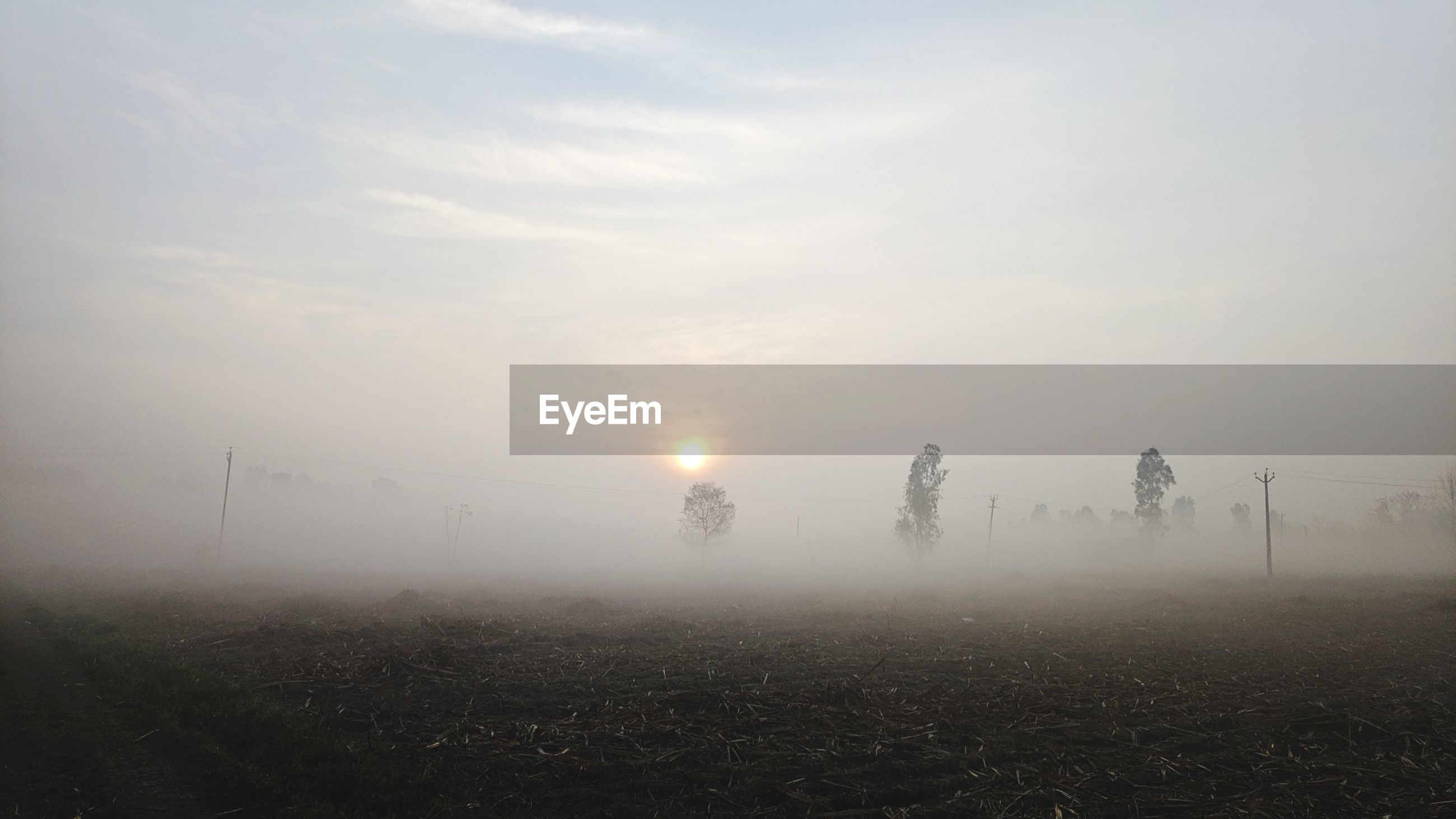 Scenic view of field against sky at morning