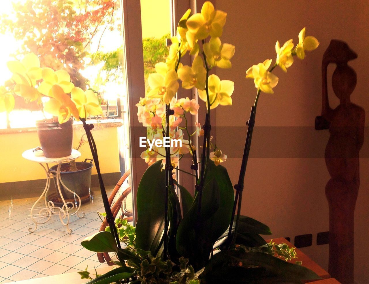 vase, flower, table, indoors, absence, home interior, no people, chair, plant, furniture, growth, bouquet, day, nature, tree, close-up, freshness