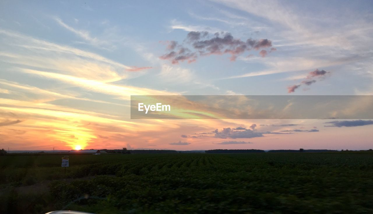 sky, cloud - sky, sunset, beauty in nature, scenics - nature, tranquil scene, tranquility, environment, field, landscape, land, orange color, nature, rural scene, idyllic, non-urban scene, no people, growth, plant, agriculture, outdoors