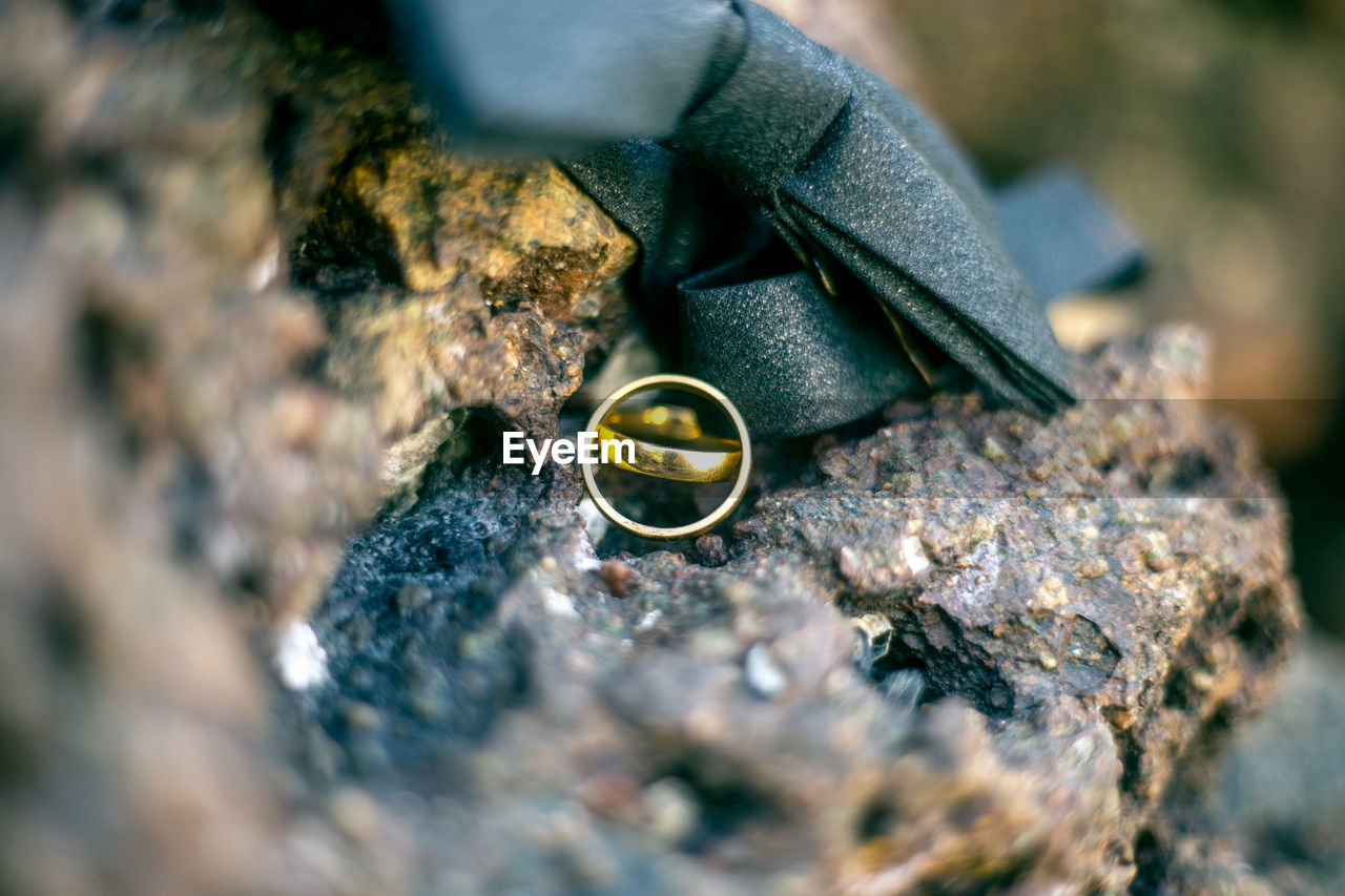 Close-Up Of Wedding Rings And Tied Bow On Rock