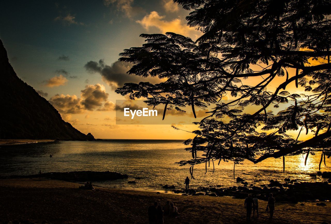 water, sky, sunset, sea, beach, beauty in nature, tree, silhouette, land, plant, nature, tranquility, scenics - nature, cloud - sky, tranquil scene, horizon over water, real people, outdoors, horizon