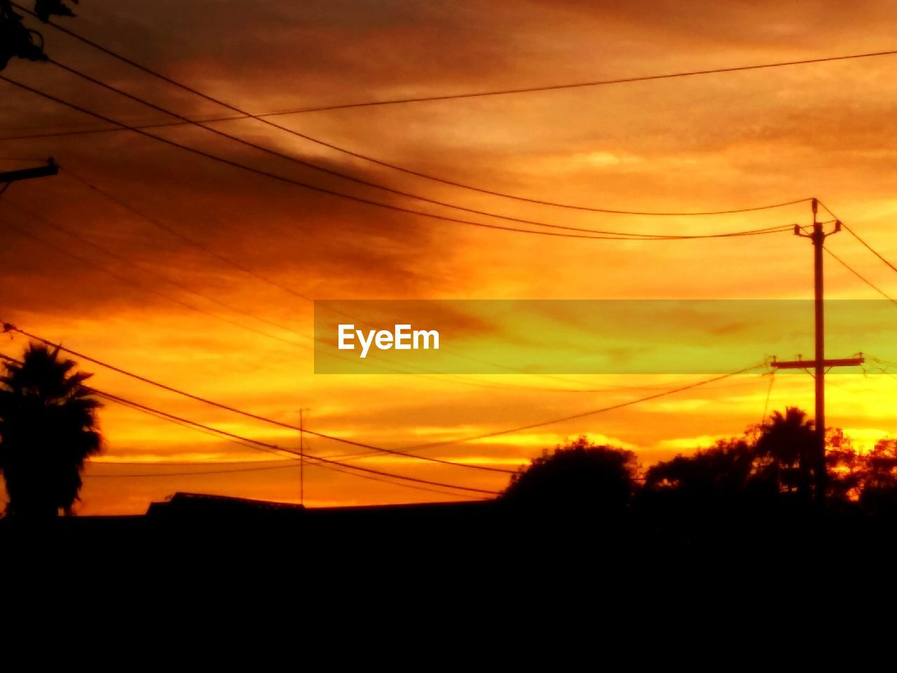 cable, sunset, silhouette, connection, power line, sky, electricity pylon, power supply, electricity, cloud - sky, nature, fuel and power generation, no people, tree, telephone line, low angle view, technology, beauty in nature, outdoors