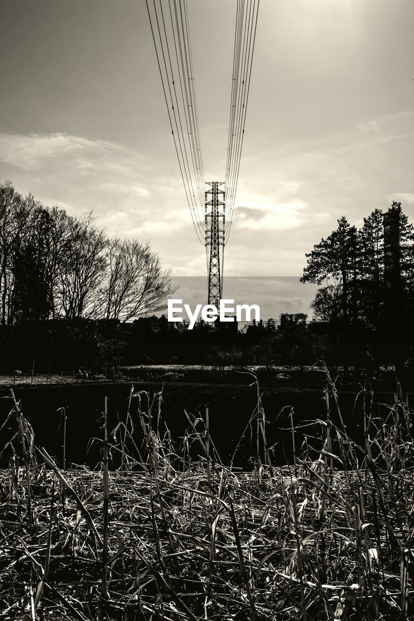 tree, sky, field, no people, silhouette, electricity pylon, cable, landscape, outdoors, day