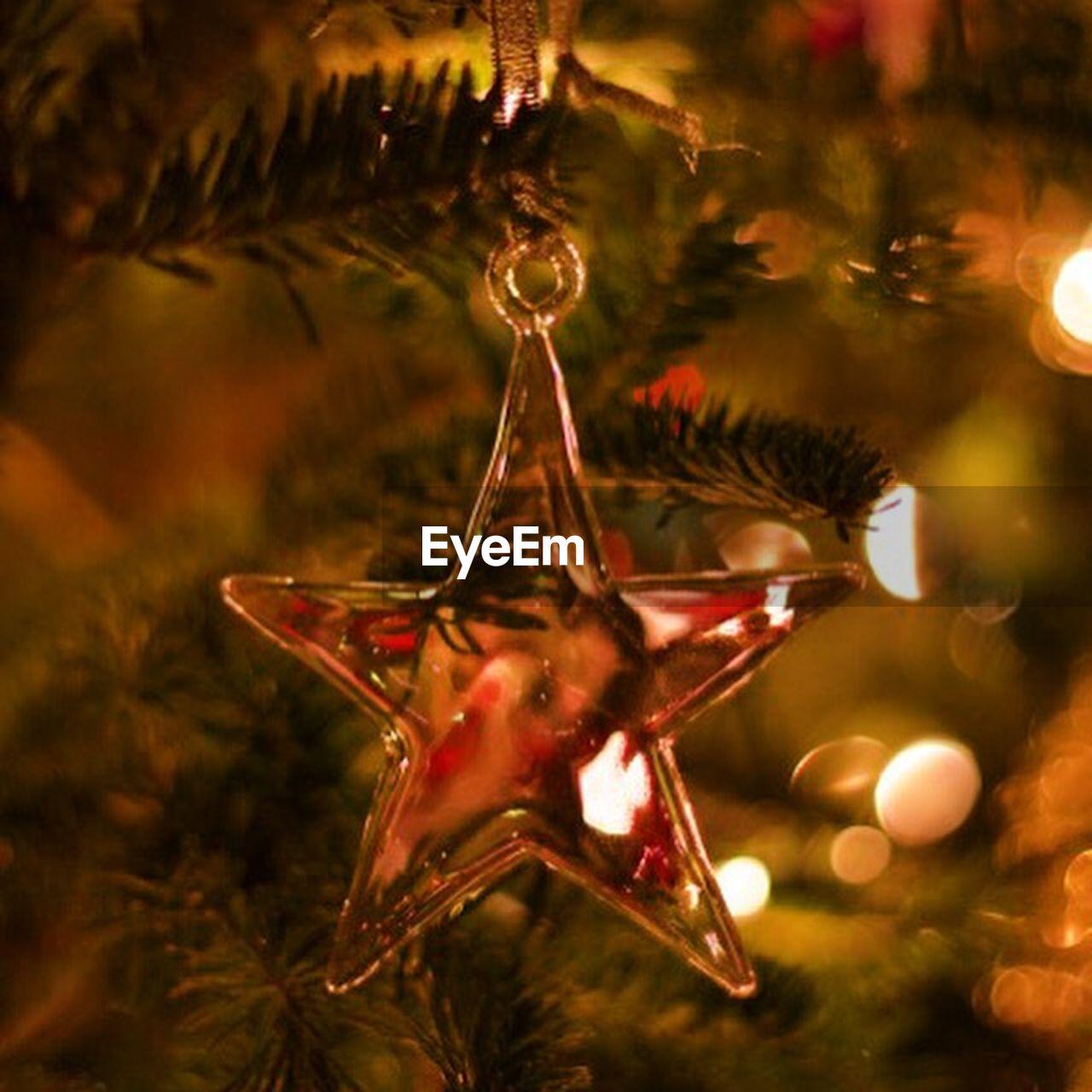 christmas, christmas tree, christmas decoration, christmas ornament, celebration, no people, close-up, tree, tradition, christmas lights, night, hanging, animal themes, indoors