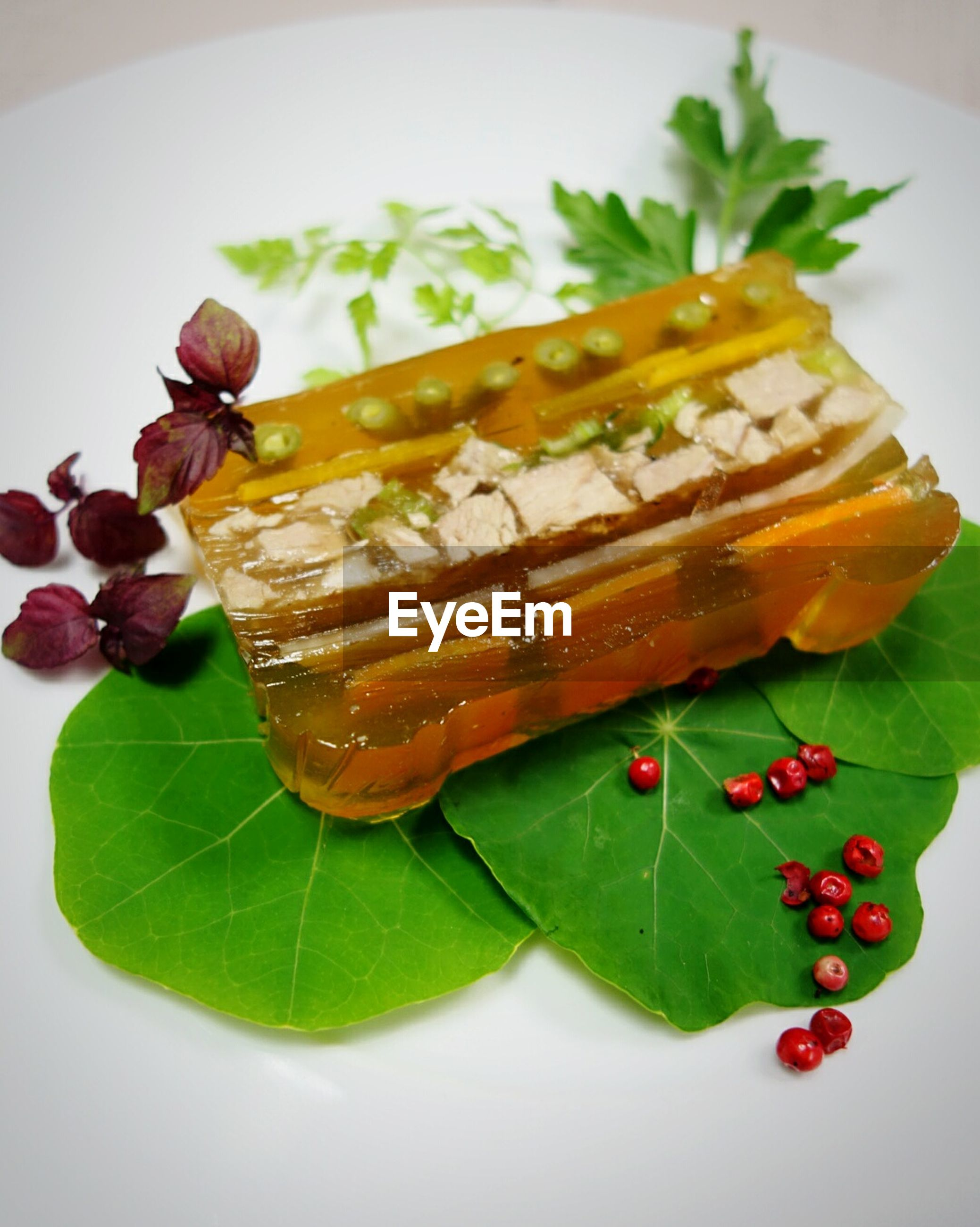 High angle view of veal aspic served in plate