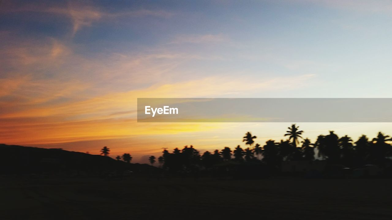 sky, sunset, tree, scenics - nature, beauty in nature, silhouette, tranquility, tranquil scene, plant, cloud - sky, orange color, nature, palm tree, non-urban scene, no people, idyllic, land, environment, landscape, outdoors