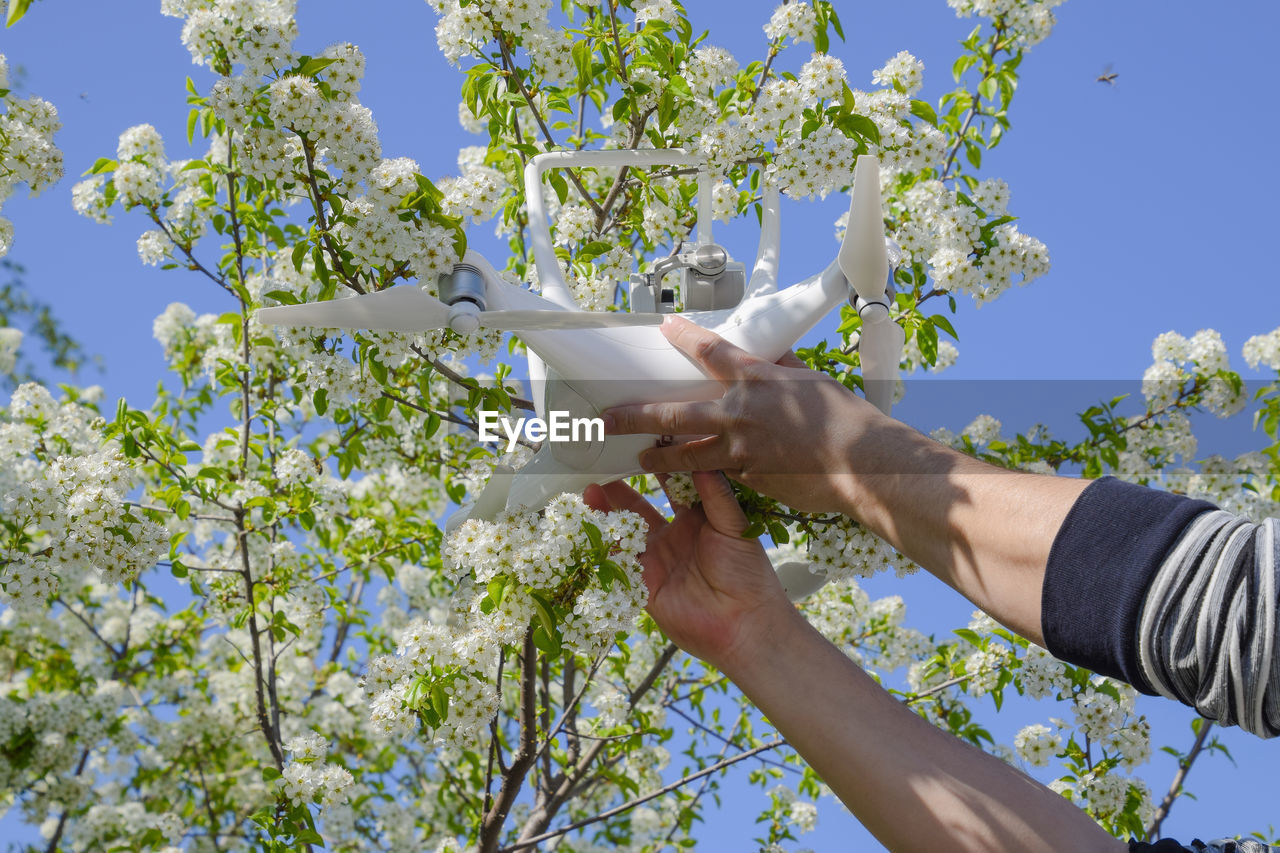 Cropped Image Of Hand Holding Drone By Flower Plant Against Sky