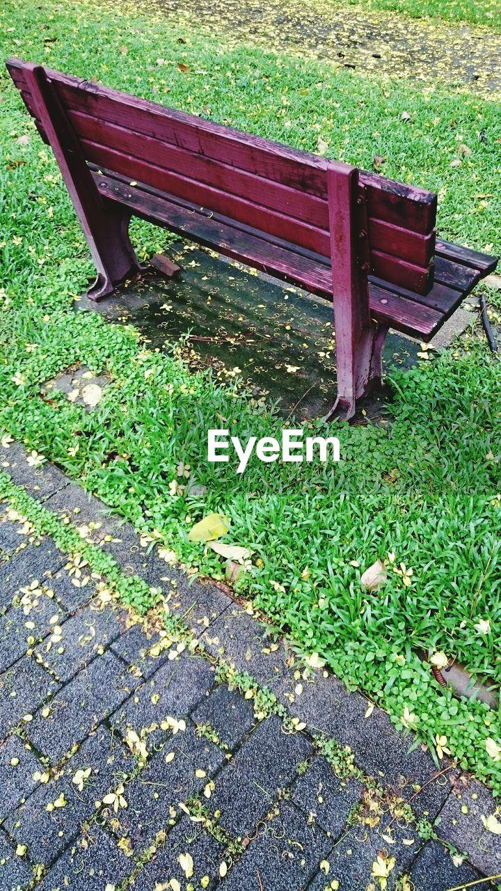 bench, grass, green color, day, outdoors, absence, leaf, seat, abandoned, no people, park - man made space, relaxation, growth, nature