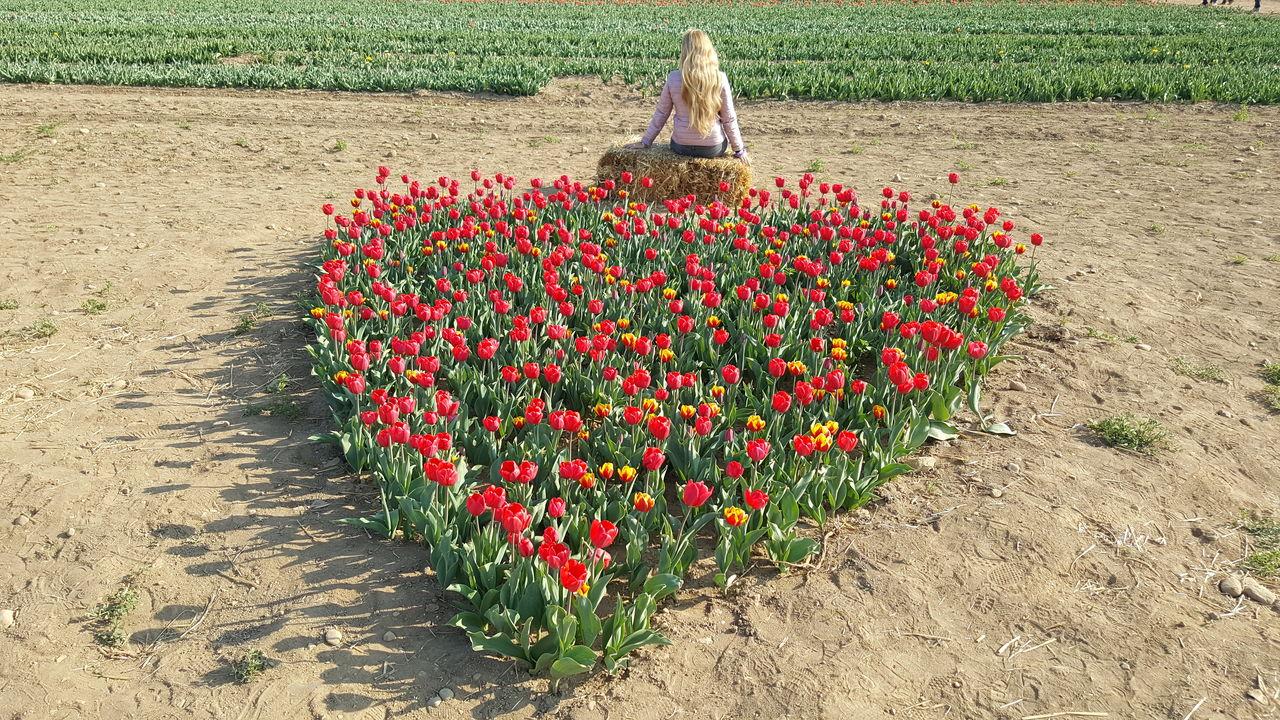 Rear view of woman sitting by heart shaped plants on field
