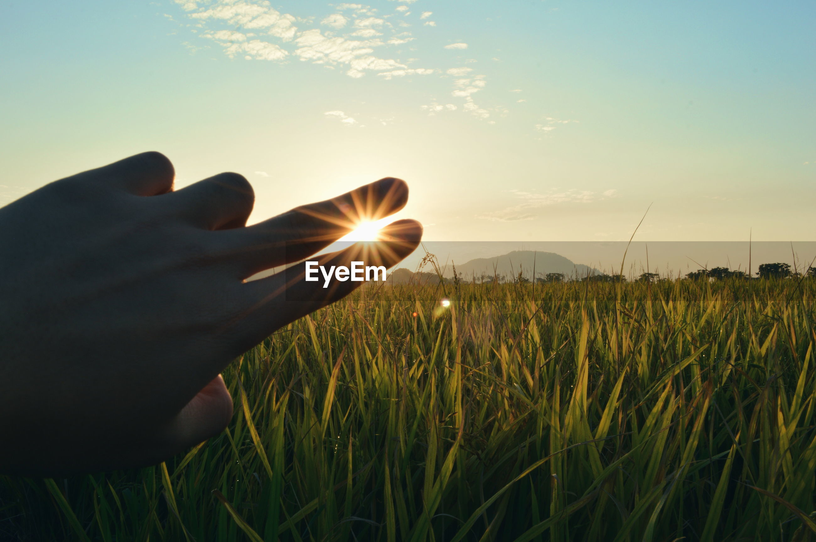 Optical illusion of fingers holding sun over agricultural field against sky