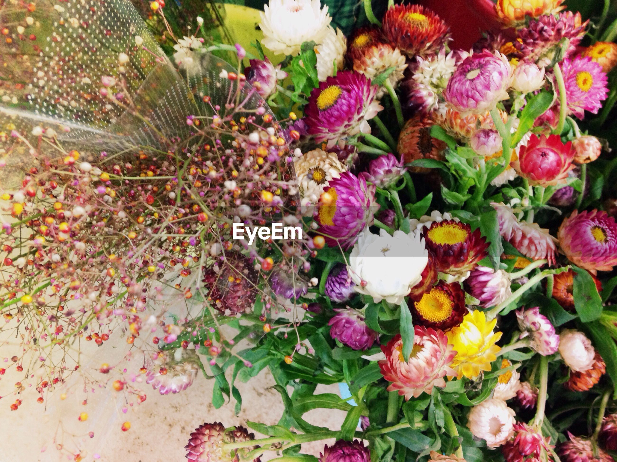High angle view of colorful flowers in bouquet