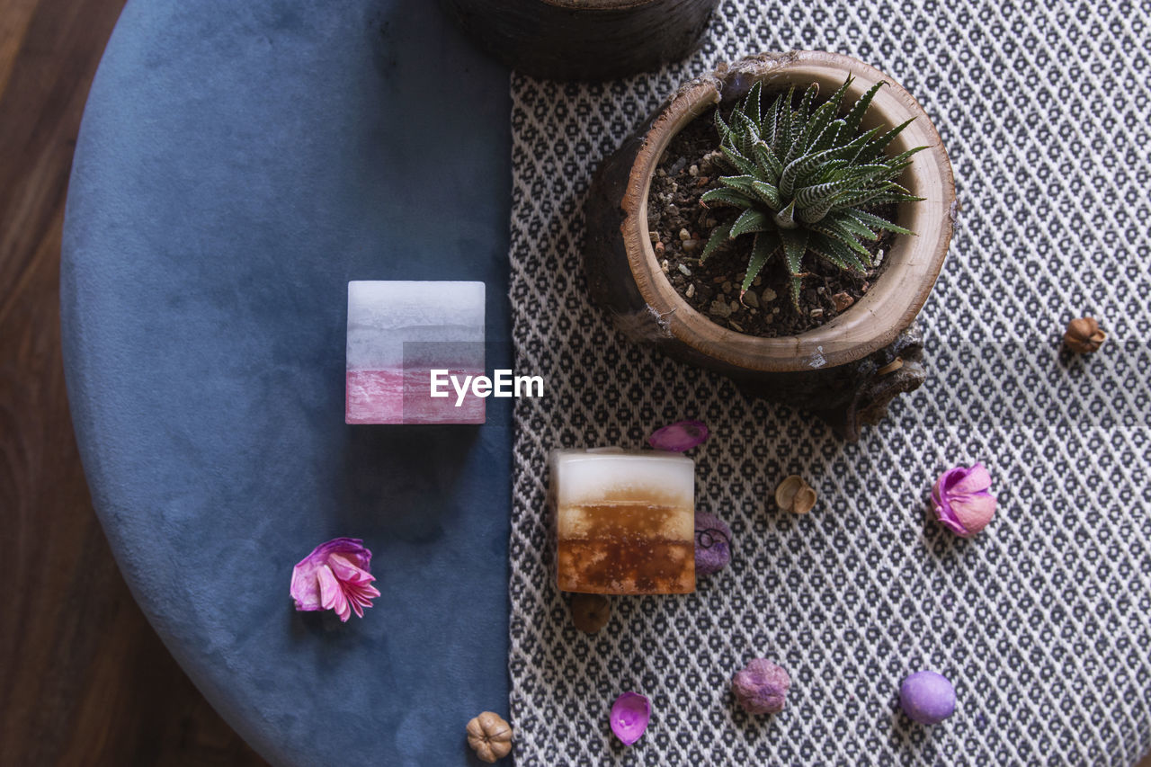 table, high angle view, food and drink, freshness, no people, still life, plant, directly above, indoors, food, close-up, wellbeing, healthy eating, pink color, nature, container, wood - material, succulent plant, flower, beauty in nature