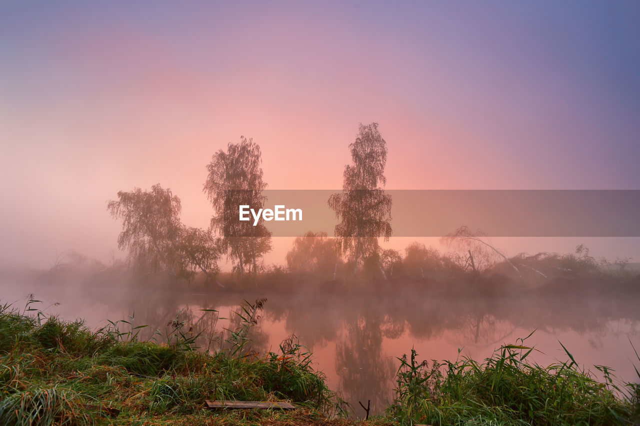 nature, beauty in nature, tranquility, tranquil scene, tree, scenics, no people, outdoors, growth, water, hazy, sunset, fog, sky, landscape, day, power in nature, forest fire