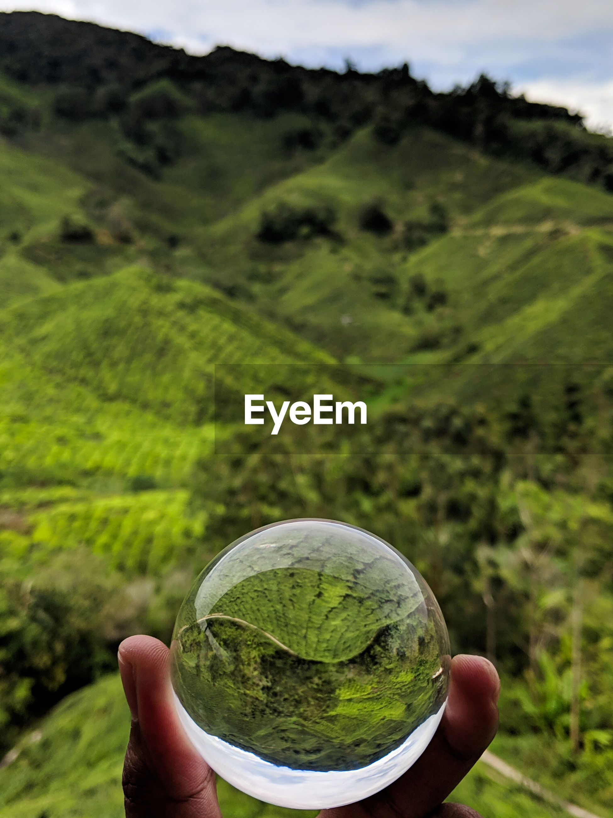 Cropped hand holding crystal ball against mountain