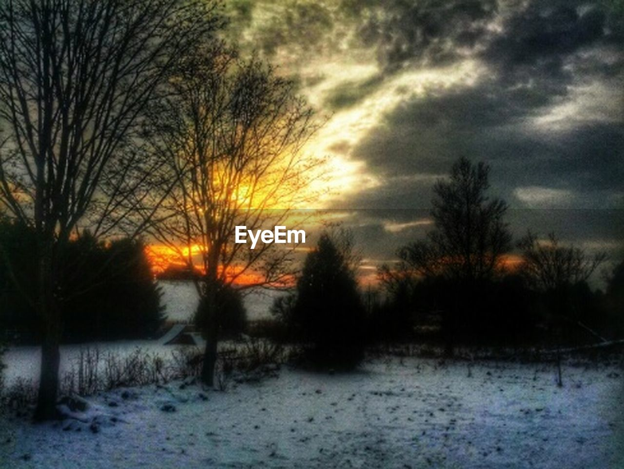 winter, snow, cold temperature, nature, weather, bare tree, tree, sunset, beauty in nature, sky, scenics, landscape, tranquility, tranquil scene, no people, outdoors, field, cloud - sky, day, bleak