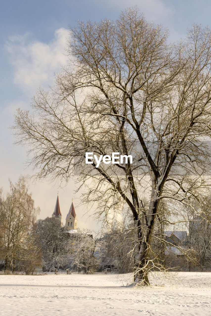 tree, plant, sky, snow, bare tree, cold temperature, nature, winter, religion, no people, place of worship, spirituality, architecture, built structure, belief, day, building, branch, outdoors