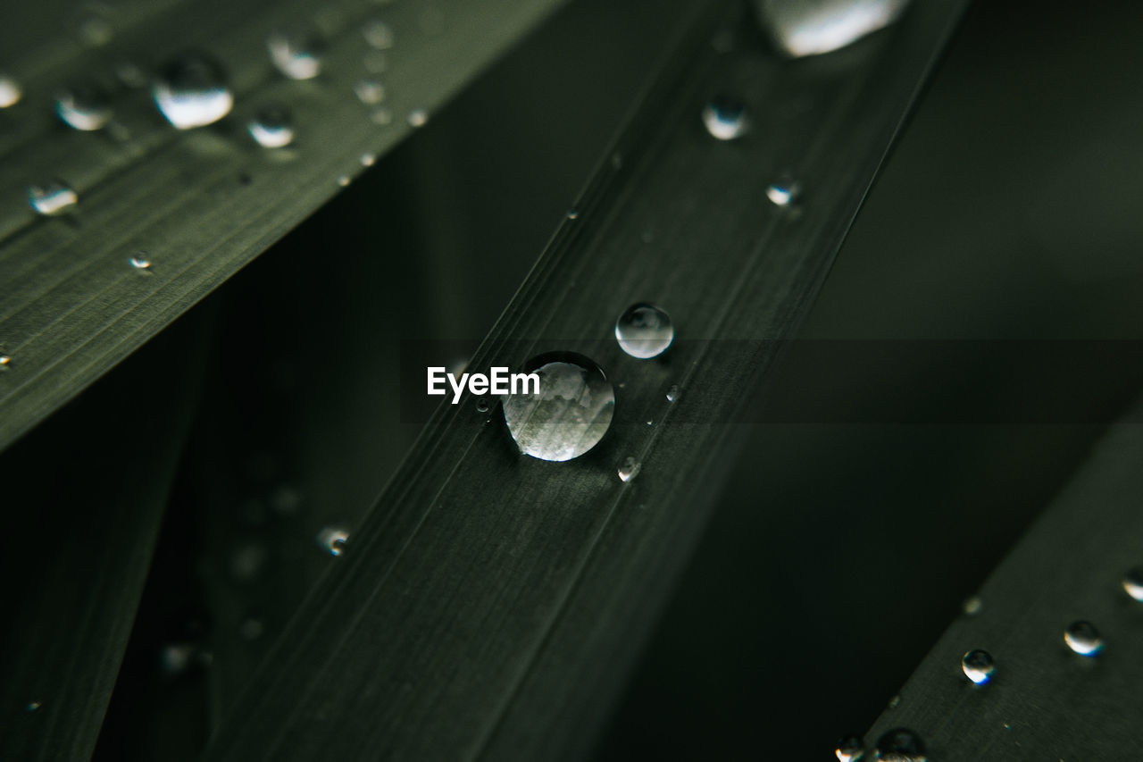HIGH ANGLE VIEW OF RAINDROPS ON WET WOOD