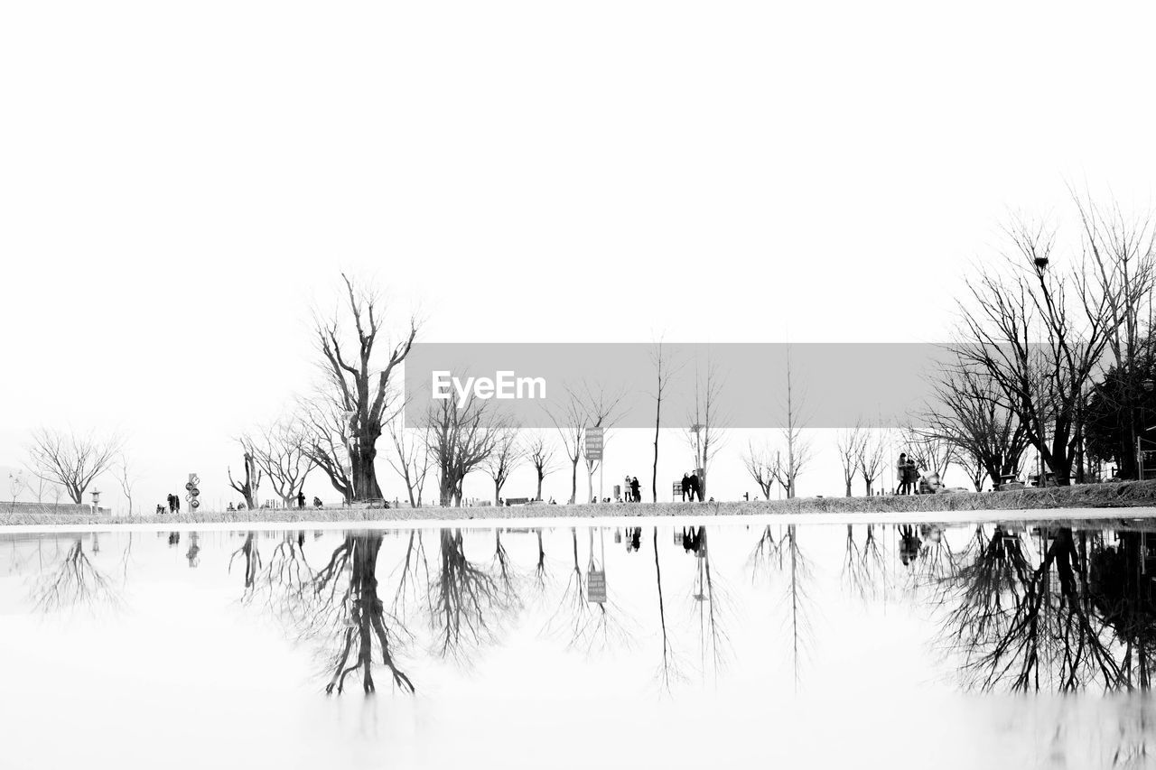 Scenic view of lake by bare tree against clear sky