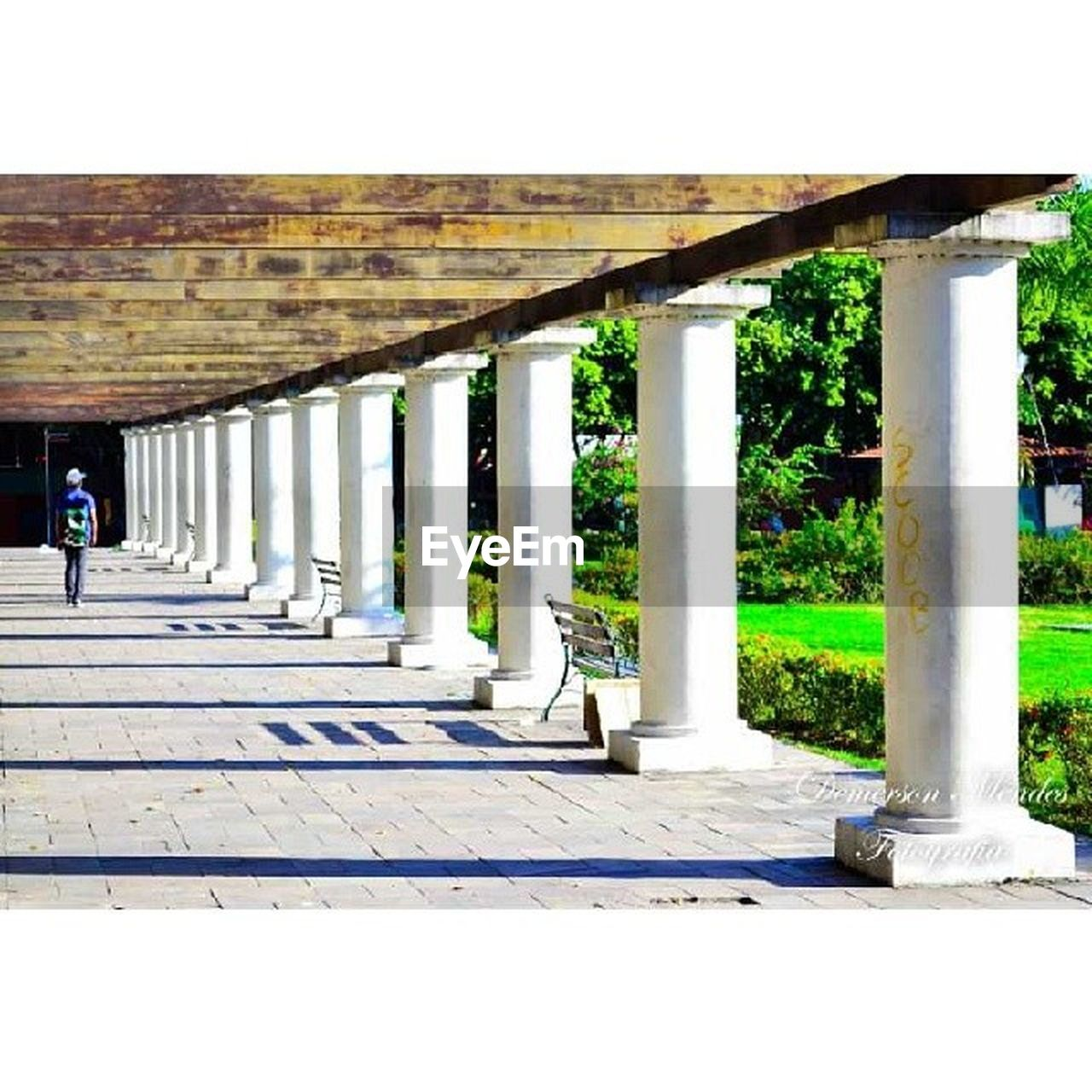 architectural column, architecture, built structure, in a row, sunlight, pillar, day, no people, outdoors