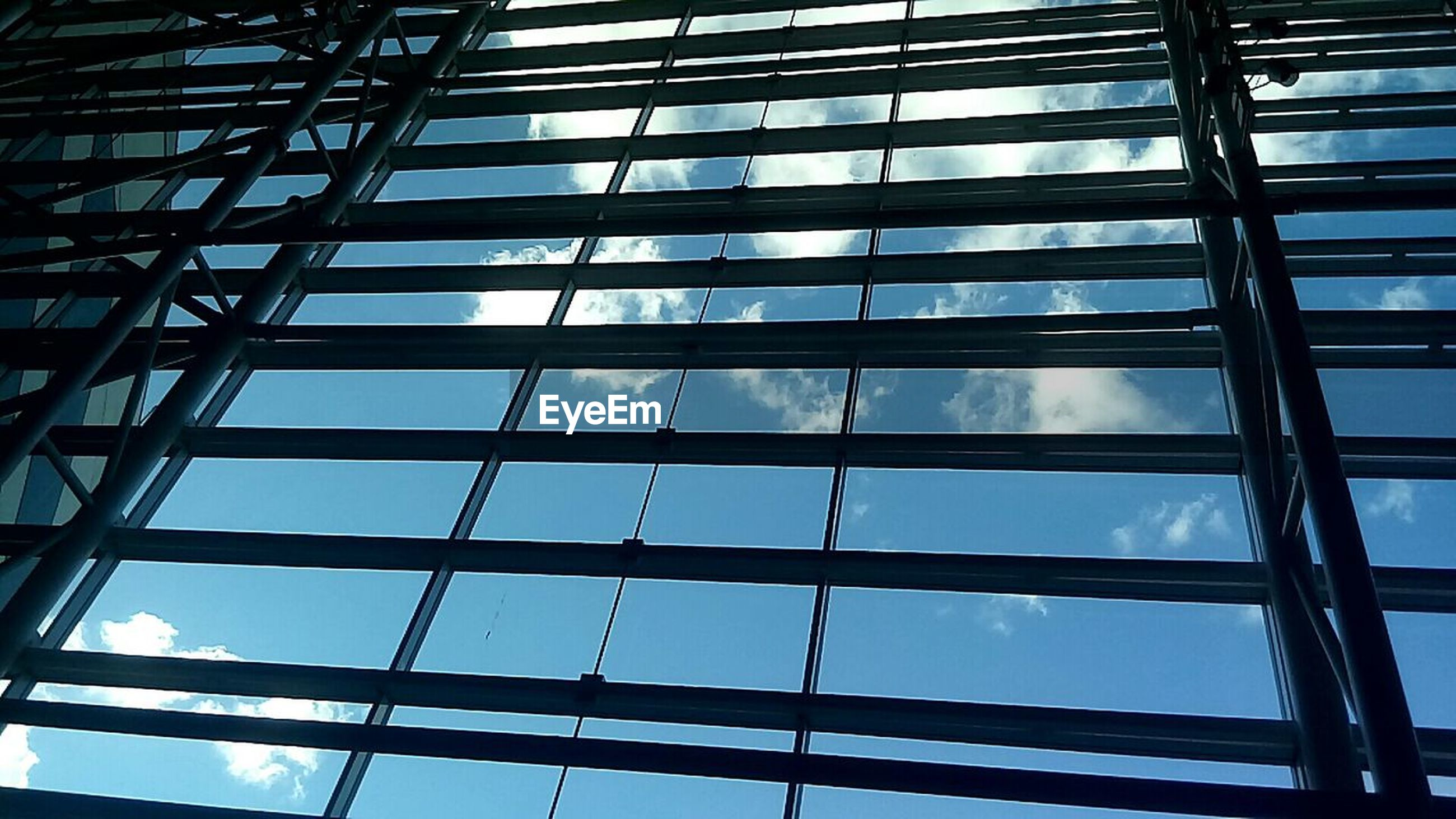 low angle view, window, architecture, full frame, day, sky, built structure, no people, skyscraper, modern, indoors, backgrounds, building exterior, growth