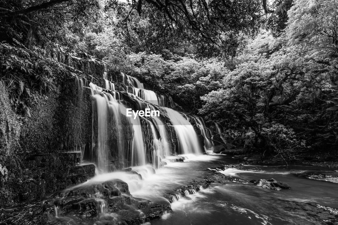 waterfall, motion, nature, beauty in nature, tree, scenics, long exposure, forest, water, no people, tranquility, tranquil scene, day, low angle view, outdoors, growth, sky