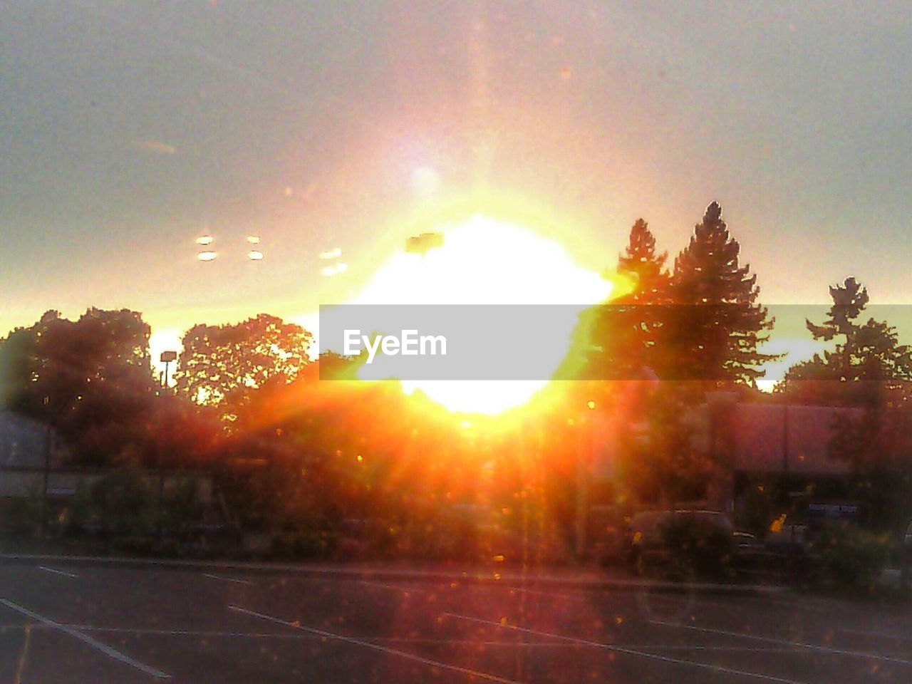 lens flare, sun, sunbeam, sunset, sunlight, tree, bright, outdoors, sky, no people, nature, silhouette, day, clear sky, beauty in nature, close-up