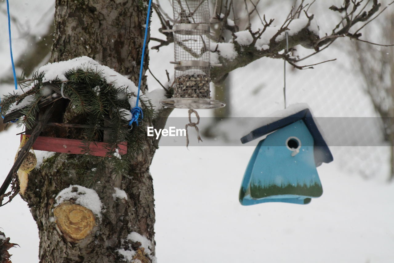 snow, cold temperature, winter, tree, weather, white color, no people, hanging, nature, day, outdoors, snowman, focus on foreground, bird, branch, close-up, perching, beauty in nature, animal themes, mammal