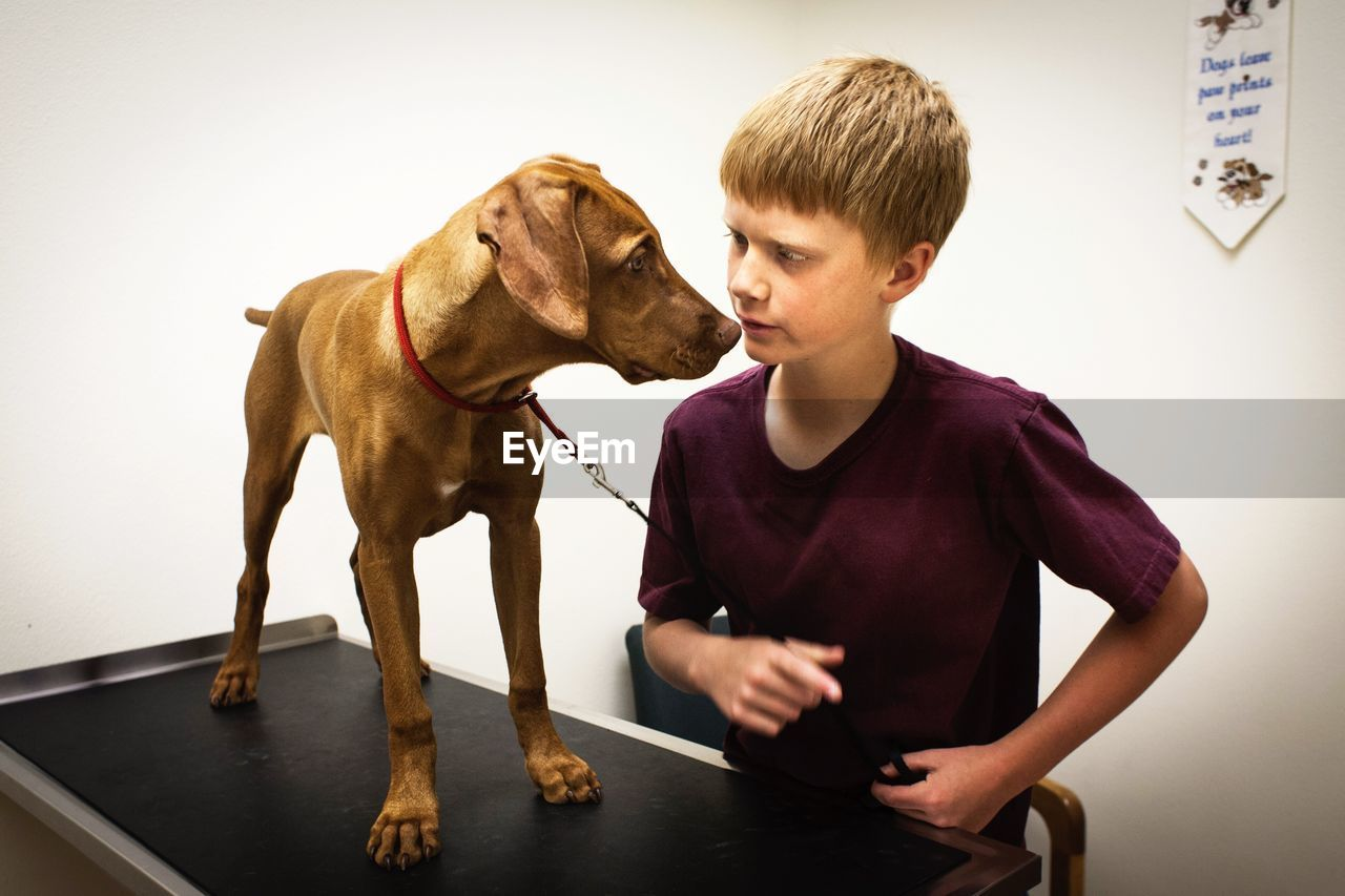 Boy Looking At Dog Standing On Examination Table At Animal Hospital
