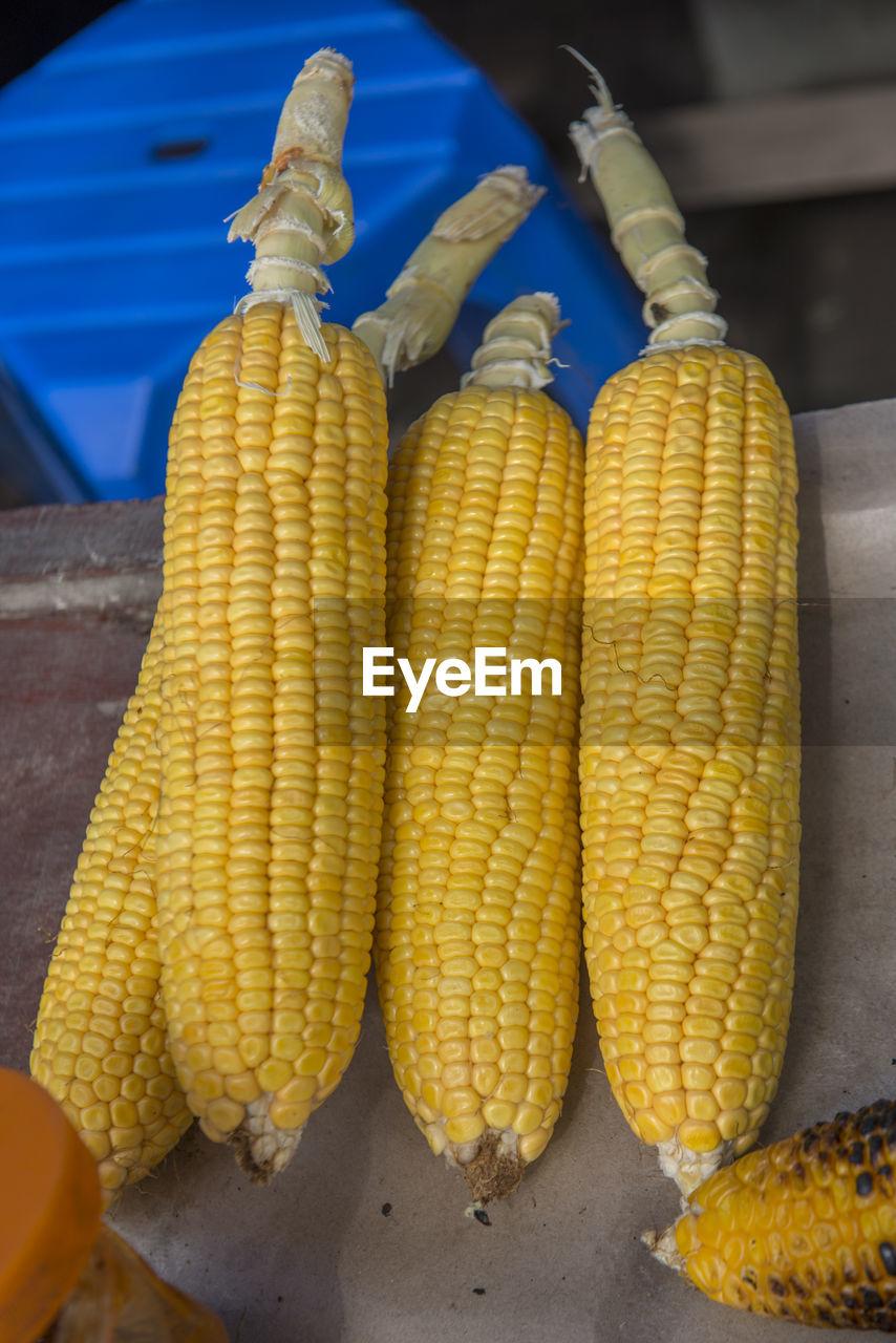 High angle view of corn on cob