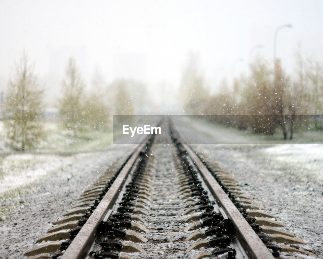 Waiting for the train going into summer Snowing Surface Level Long Mode Of Transportation Outdoors Focus On Foreground Snow Day Cold Temperature The Way Forward Plant Tree Direction No People Diminishing Perspective Track Transportation Railroad Track Rail Transportation Snowflakes Snowfall My Best Photo