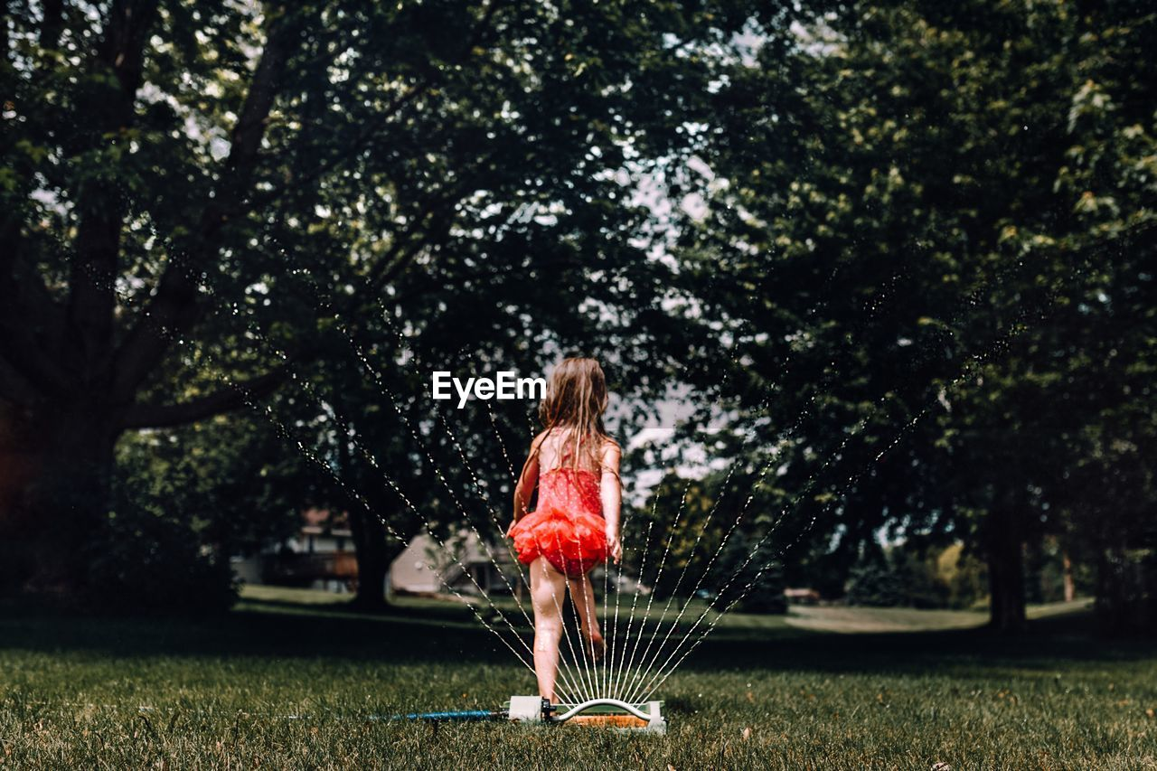 Rear view of girl standing by sprinkler on grass