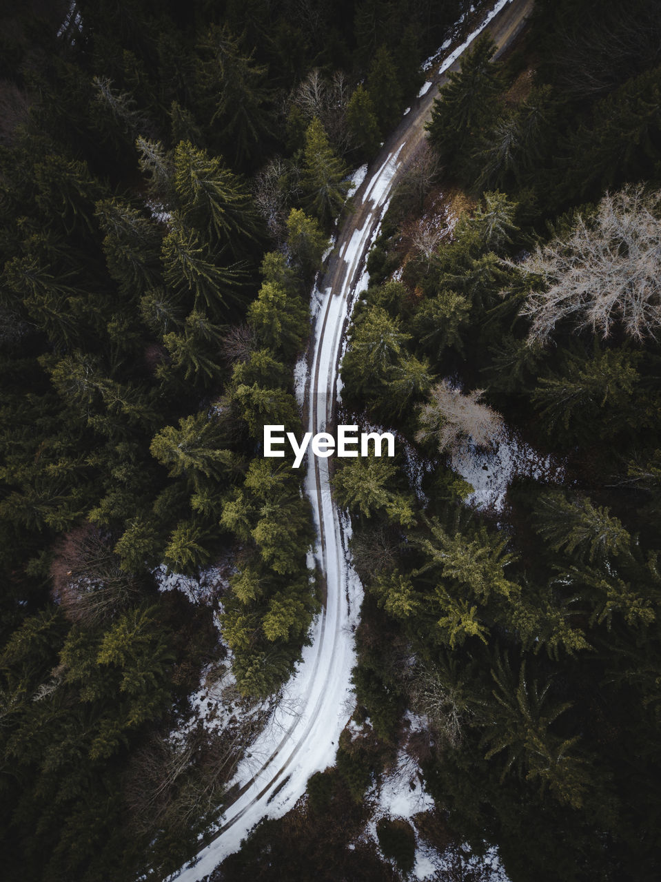 Aerial view of snow covered road amidst trees in forest