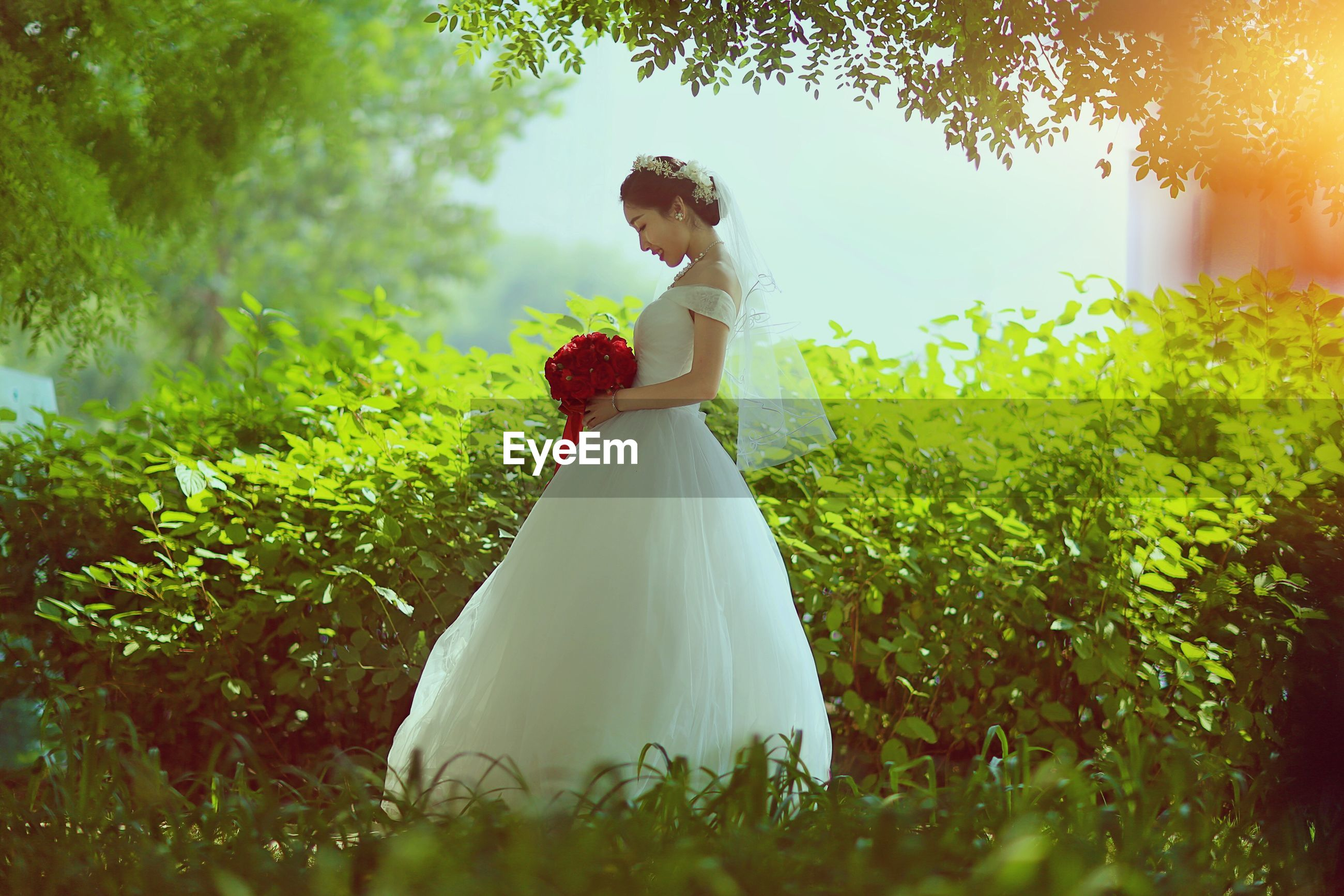 wedding, bride, wedding dress, life events, love, bridegroom, women, young women, celebration, groom, young adult, celebration event, wedding ceremony, standing, married, wife, real people, nature, bouquet, togetherness, outdoors, well-dressed, grass, day, beauty in nature, full length, flower, beautiful woman, tree, people