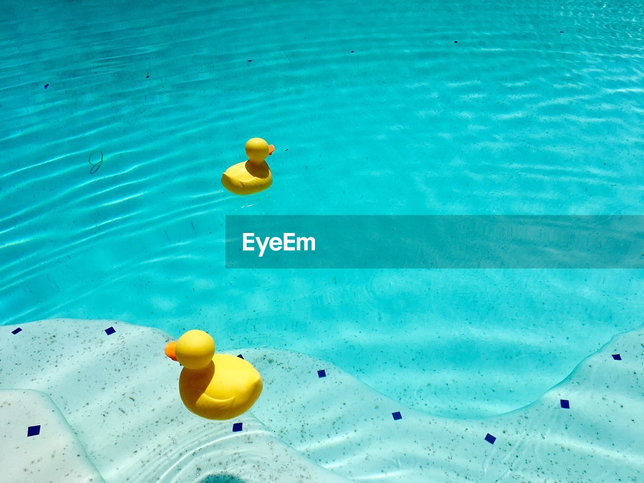 High Angle View Of Toys Floating On Water