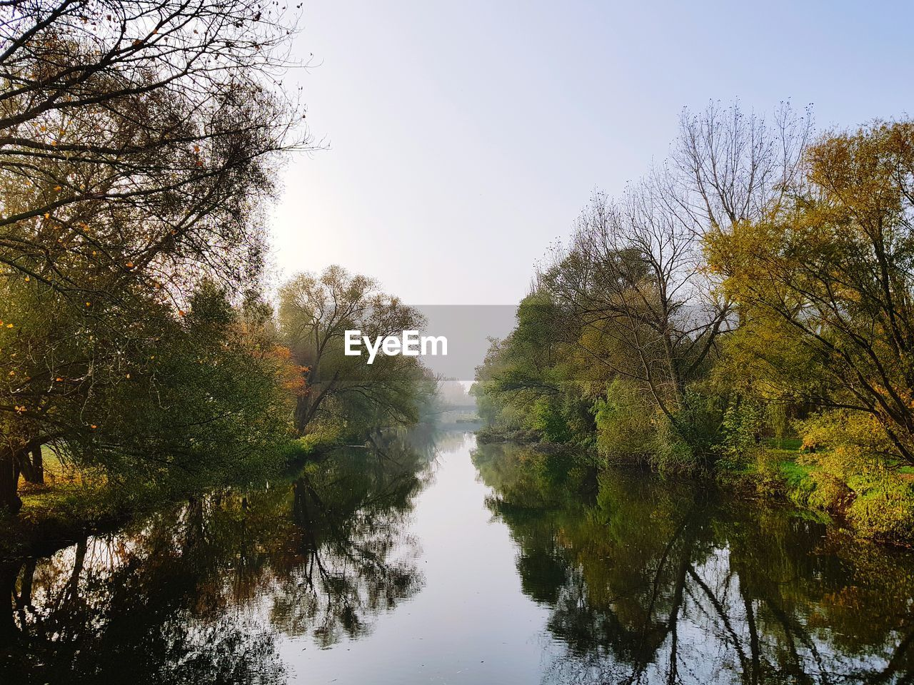 tree, plant, sky, tranquility, water, beauty in nature, tranquil scene, scenics - nature, nature, autumn, reflection, clear sky, no people, growth, day, waterfront, non-urban scene, forest, idyllic, change, outdoors, canal